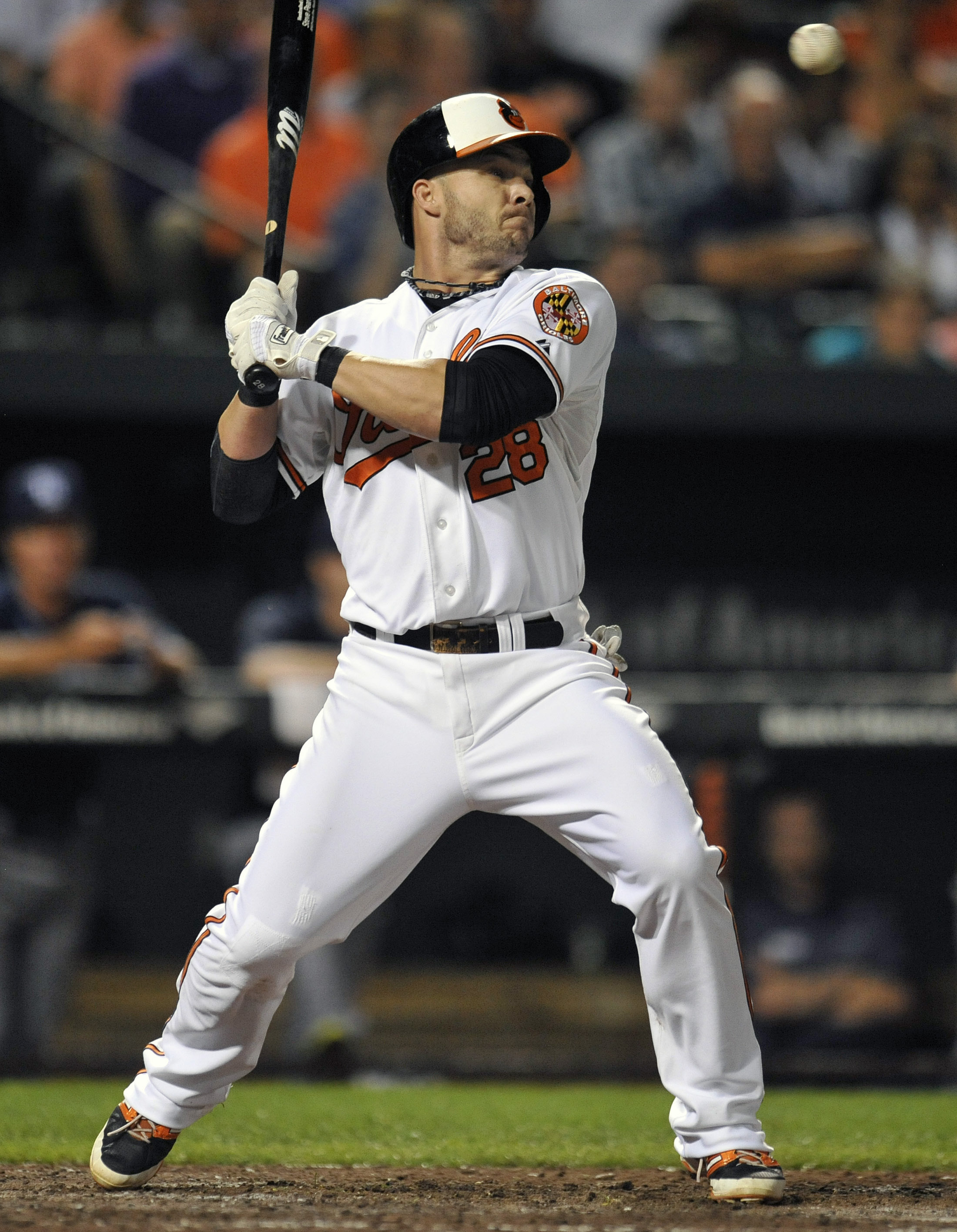Steve Pearce, for your transgressions