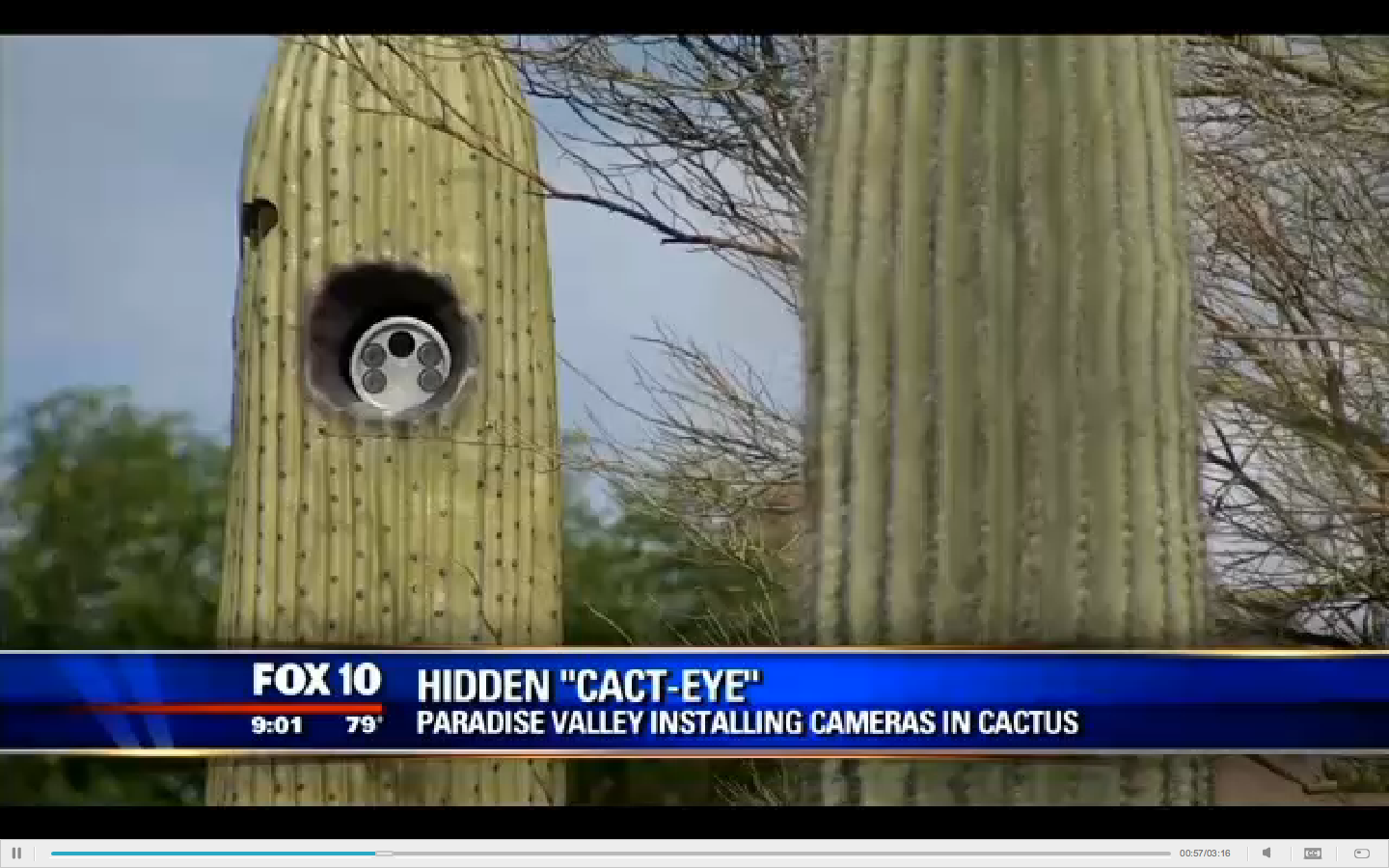 An Arizona town is hiding license plate readers in fake cactuses