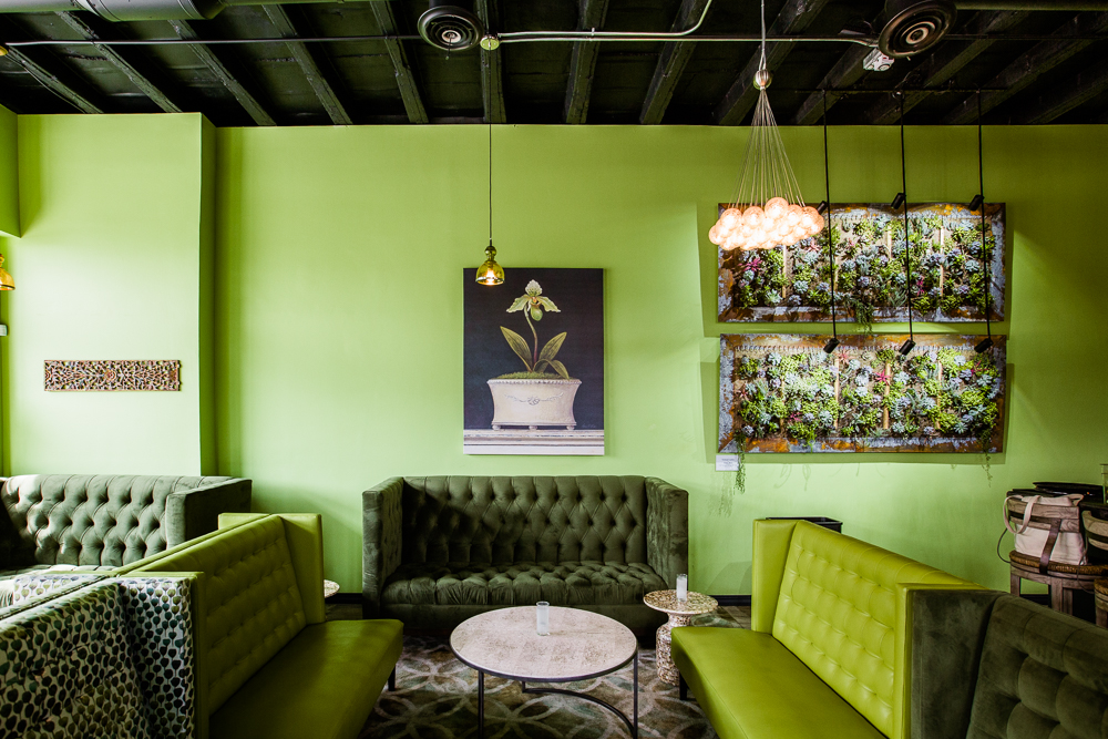 Chartreuse Kitchen & Cocktails.