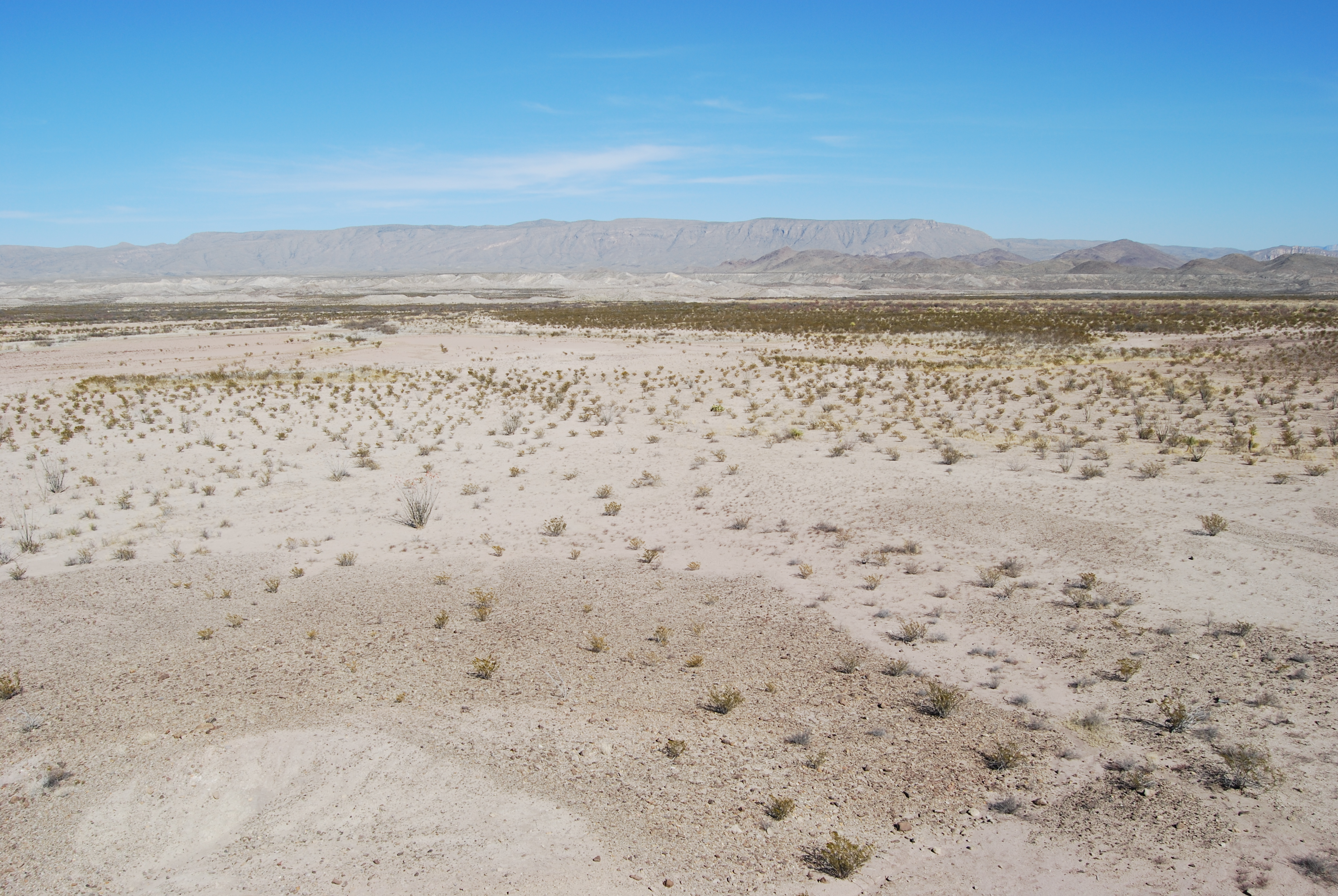 Much like Big Bend National Park, we are in a desert wasteland of Aggie sports nothing with the promise of a football oasis on the other side of the ridge.