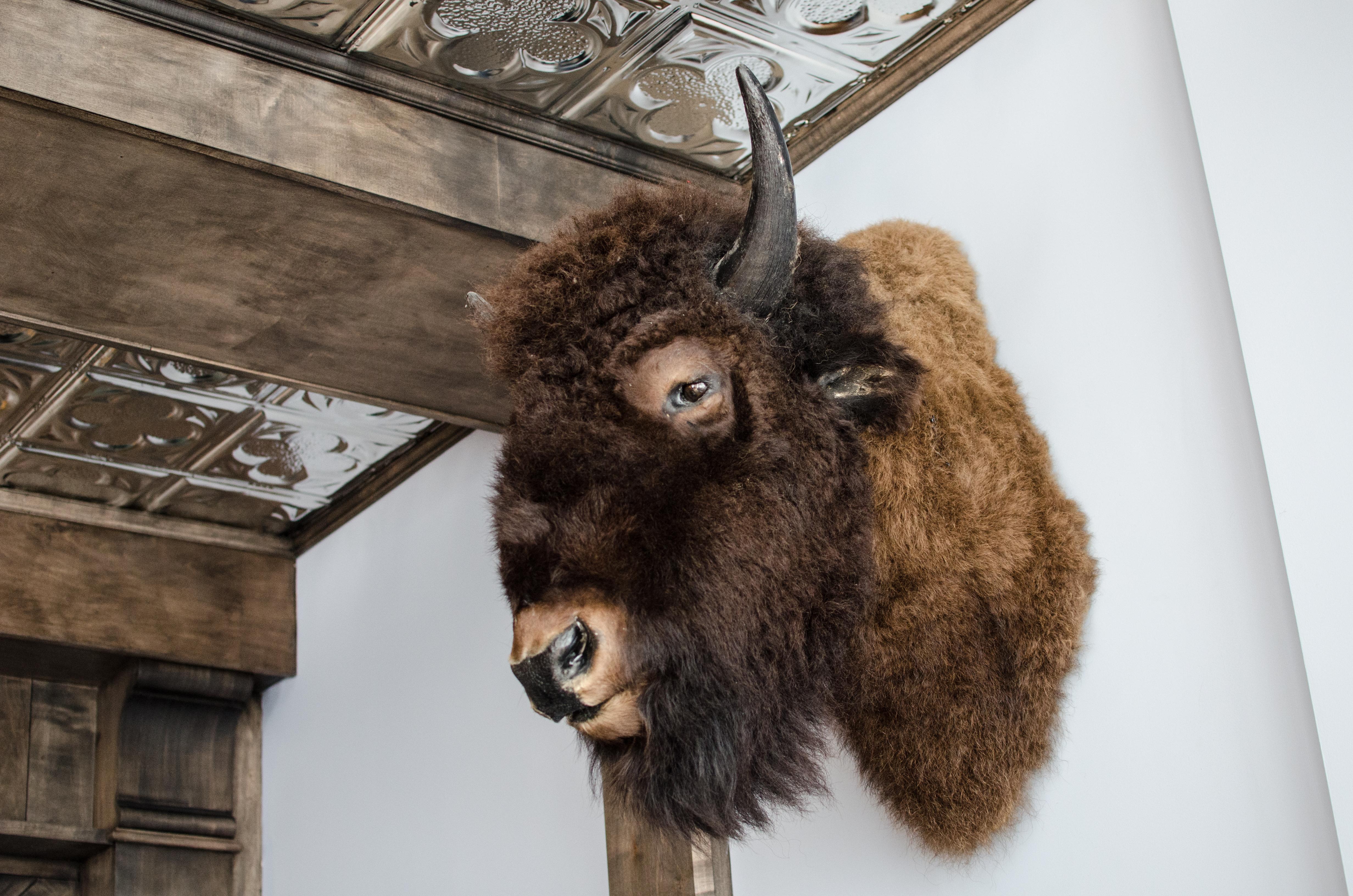 Buffalo Tracey