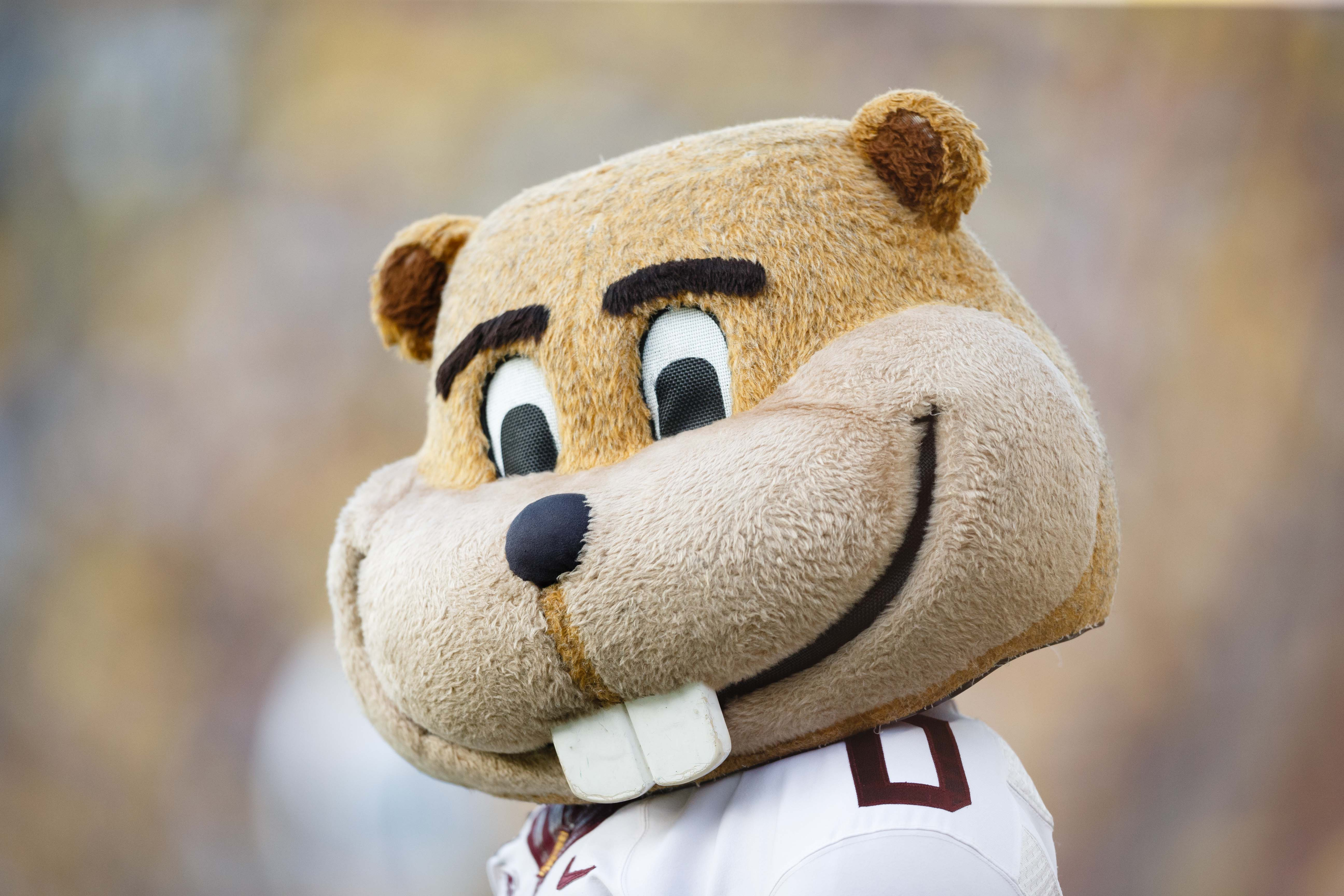 Goldy loves all of you.