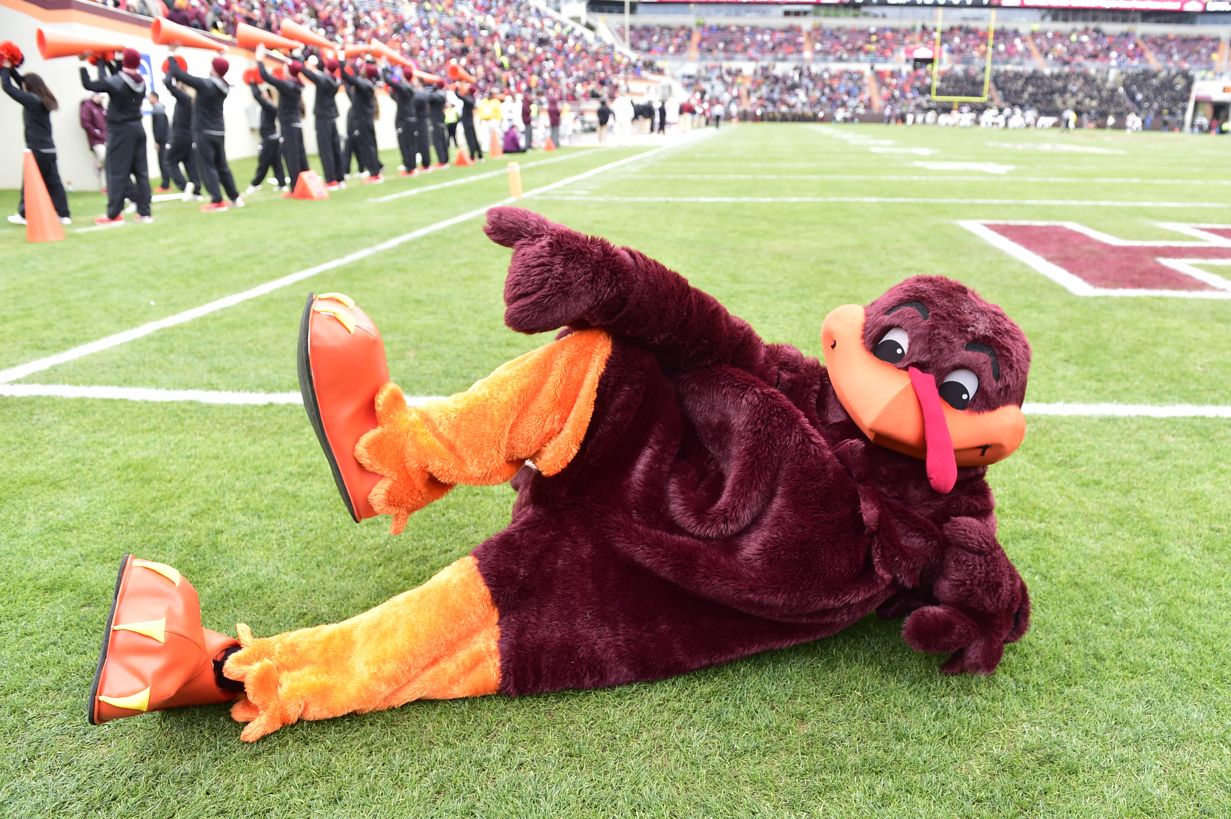 The Bird is the Word... Hokie Bird Loves Game Day, Too!