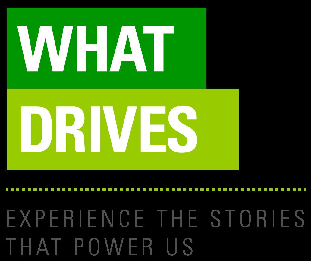 BP - What Drives 2015 logo