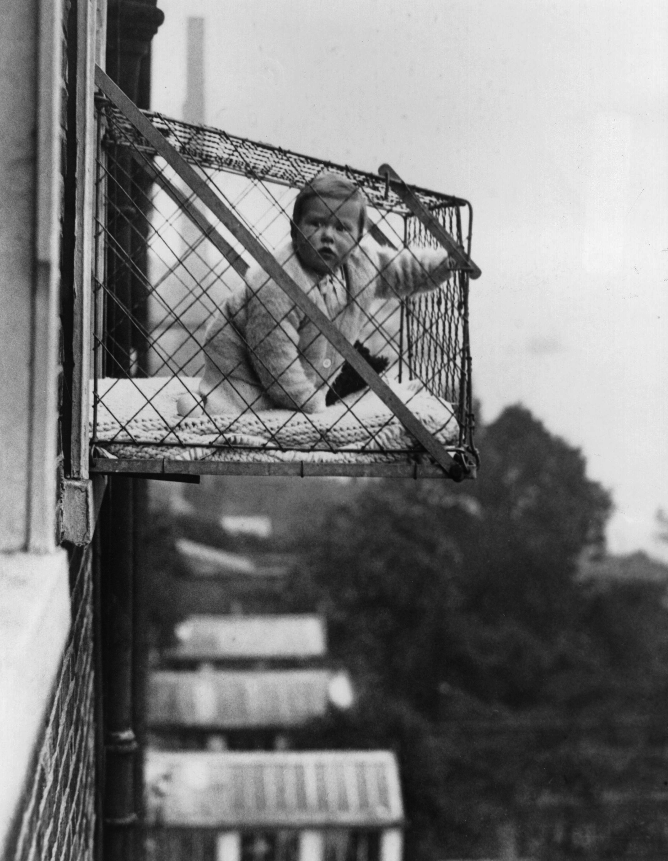 A fresh baby cage.