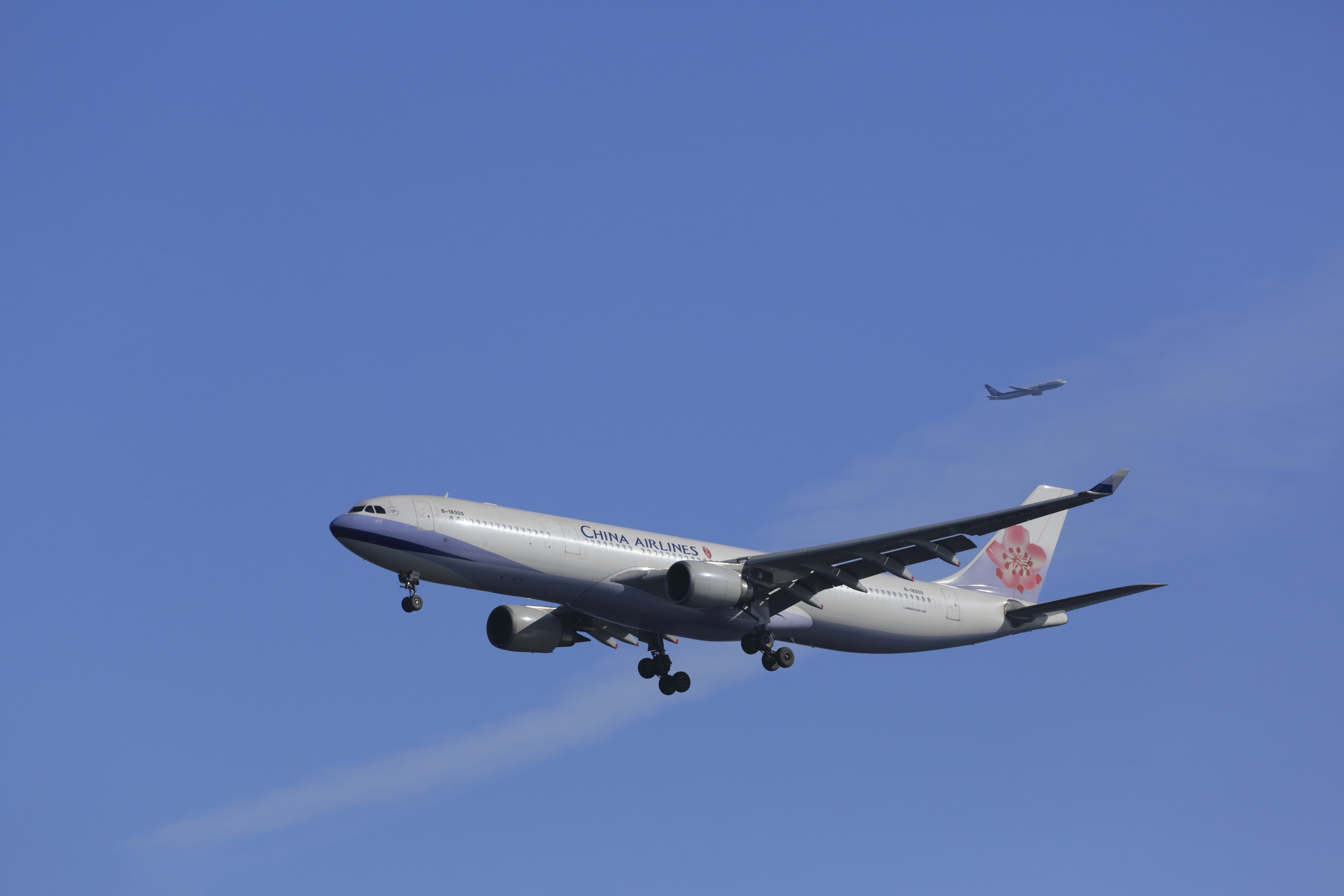 Why a Taiwanese woman gave birth on a plane — only to be separated from her child