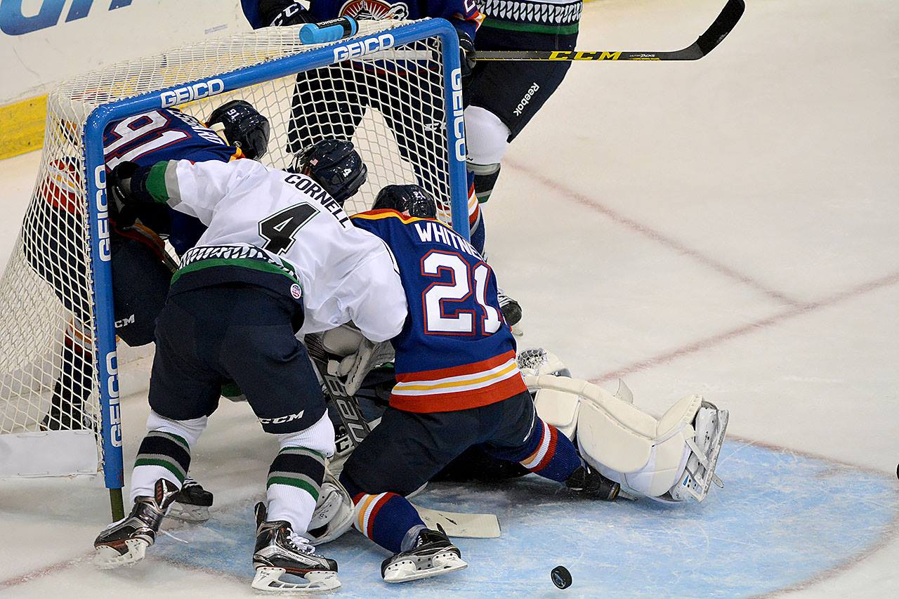 Steven Whitney battles in front of the net against the Florida Everblades Nov 21, 2015