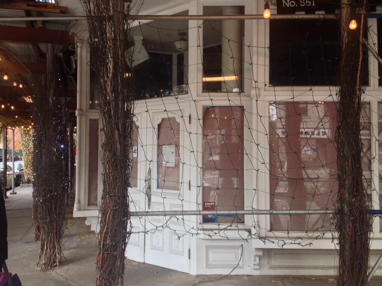 [Spasso, behind a web of lights, branches, and scaffolding.]