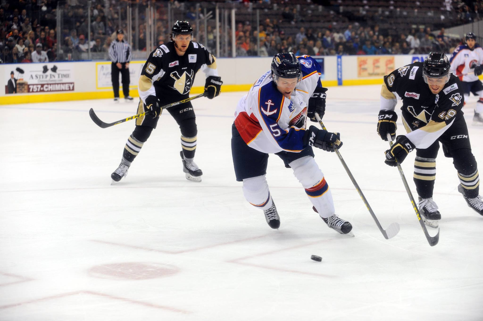 Defenseman Charles-Olivier Roussel currently leads the Norfolk Admirals with 19 Points (2G, 17A)