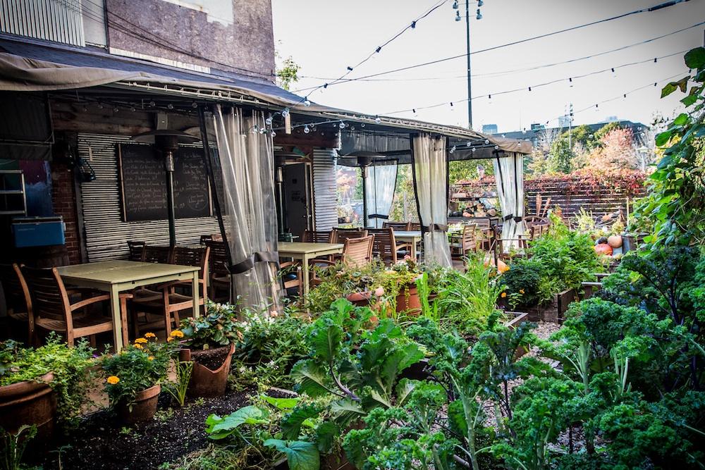 Joe Beef's garden