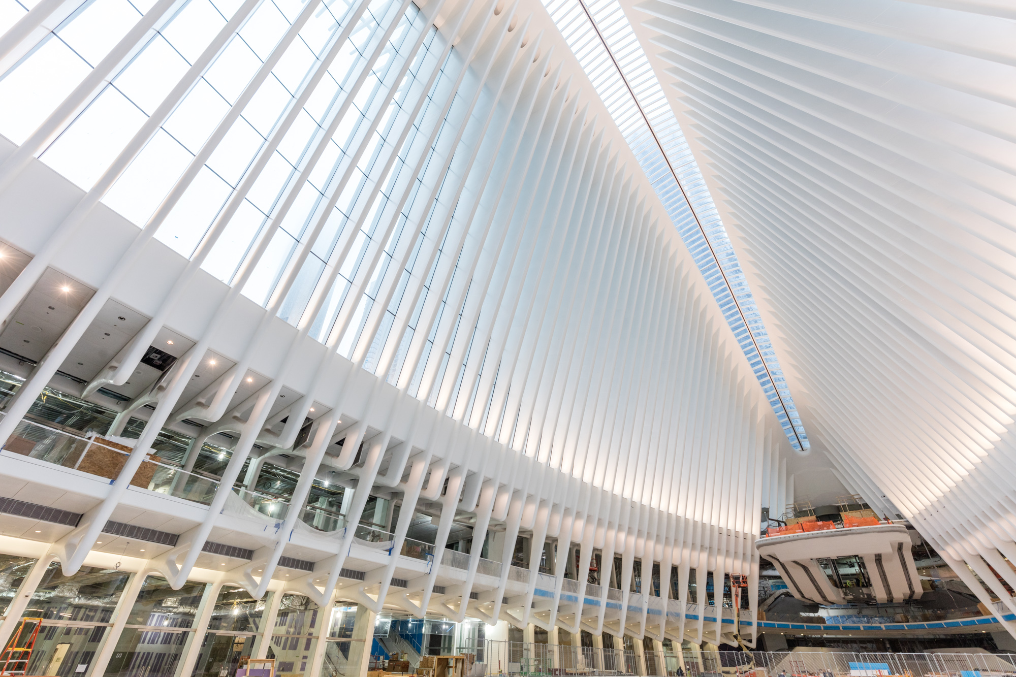 WTC Transportation Hub Opens Today to Mixed Reviews