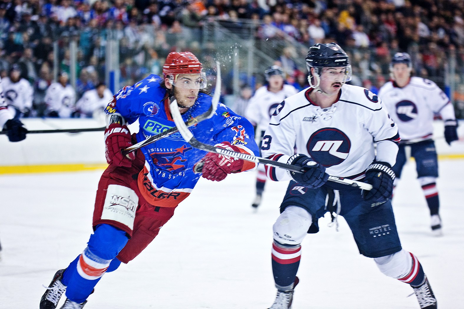 2015 AIHL Grand Final game between Melbourne Ice and New Castle North Stars