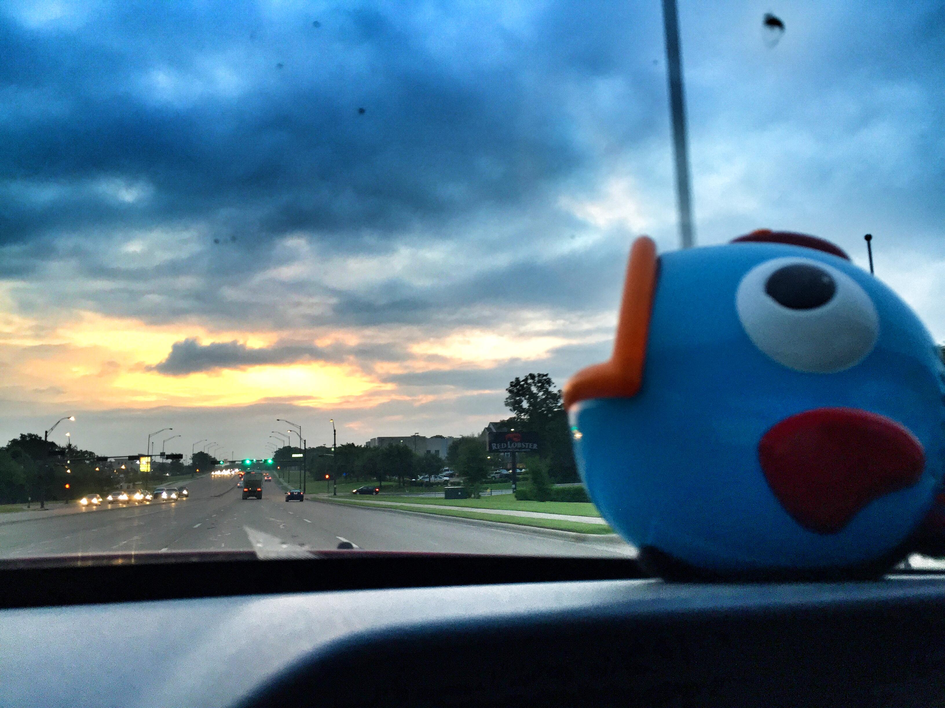 Whammy Jr. on the road - @Statboy203