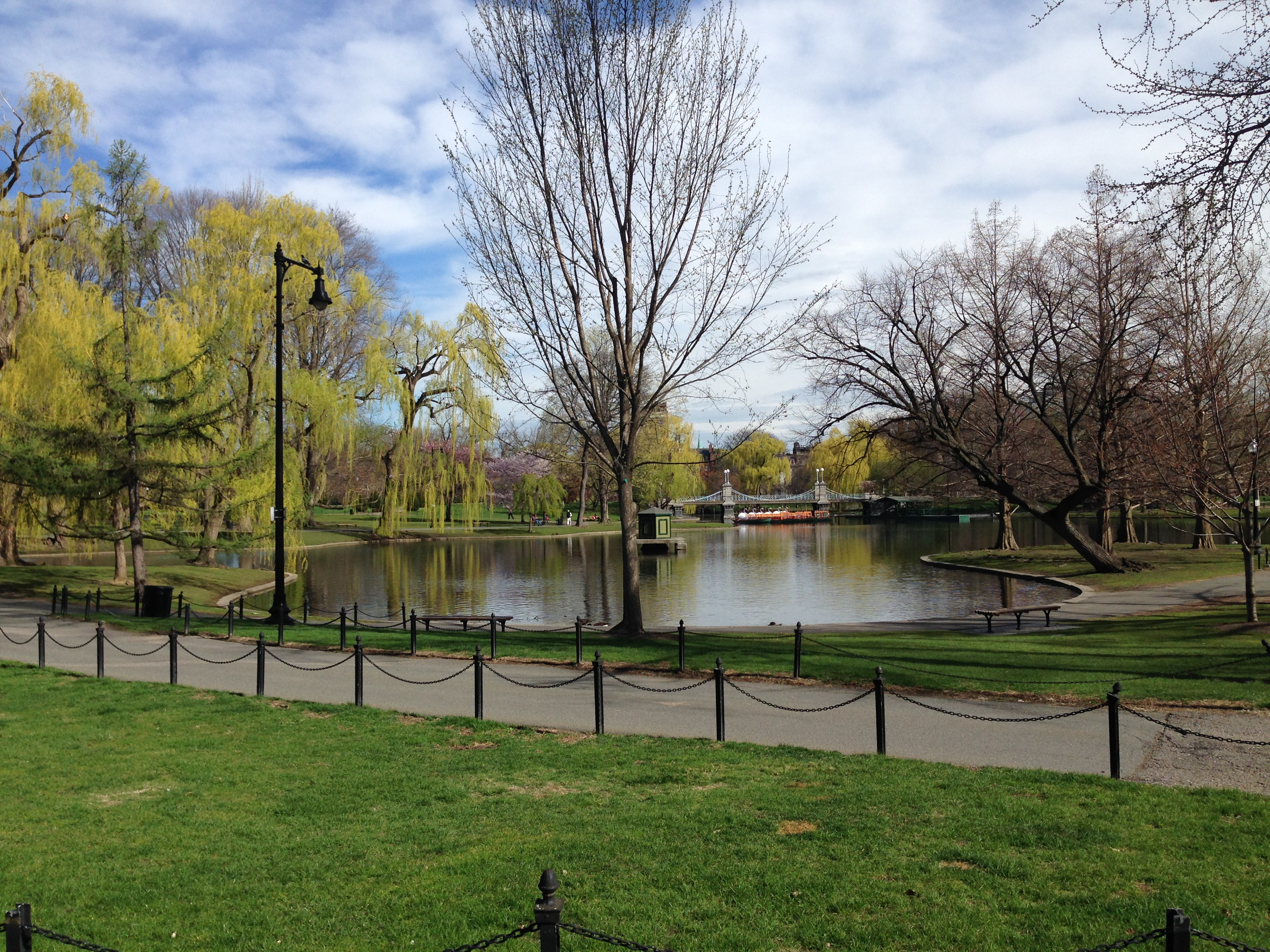 A view of Boston Public Garden, with swan boats visible in the background