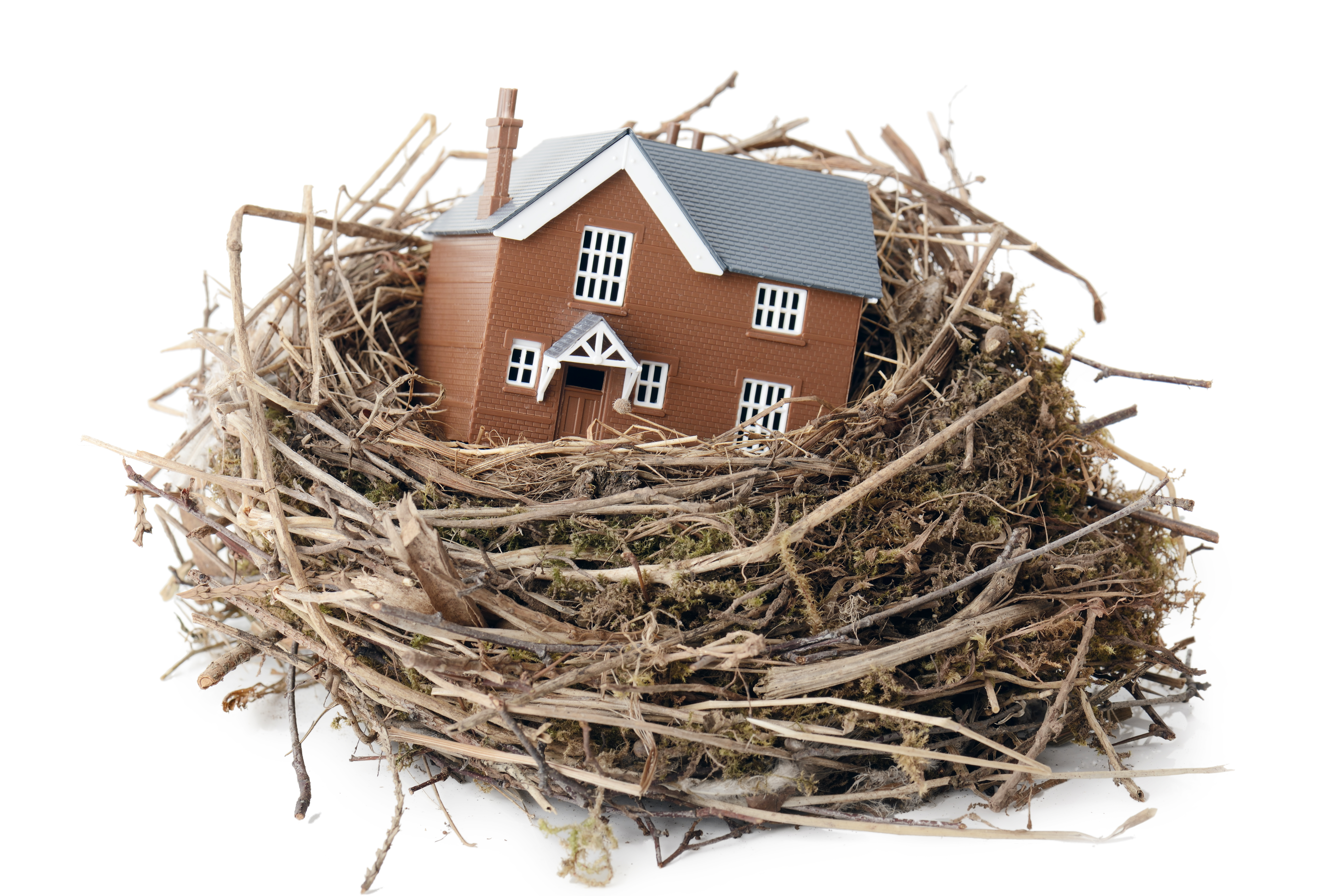 Schema Collegamento Nest : Nest moves to become the connective tissue of the connected home