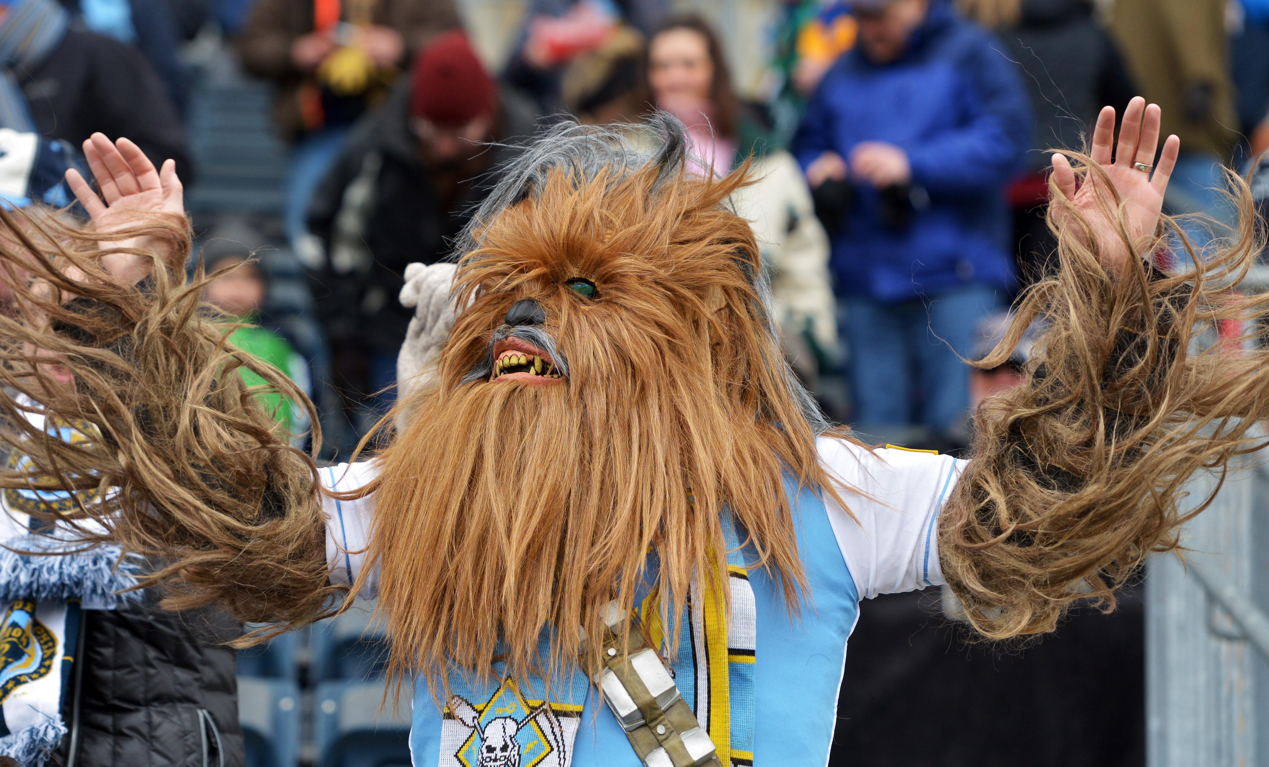 Chewbacca fan at a sporting event