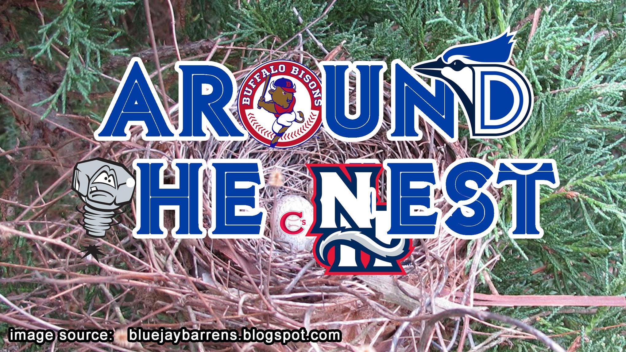 Around the Nest