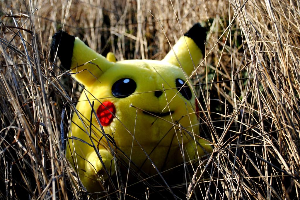 Pikachu found