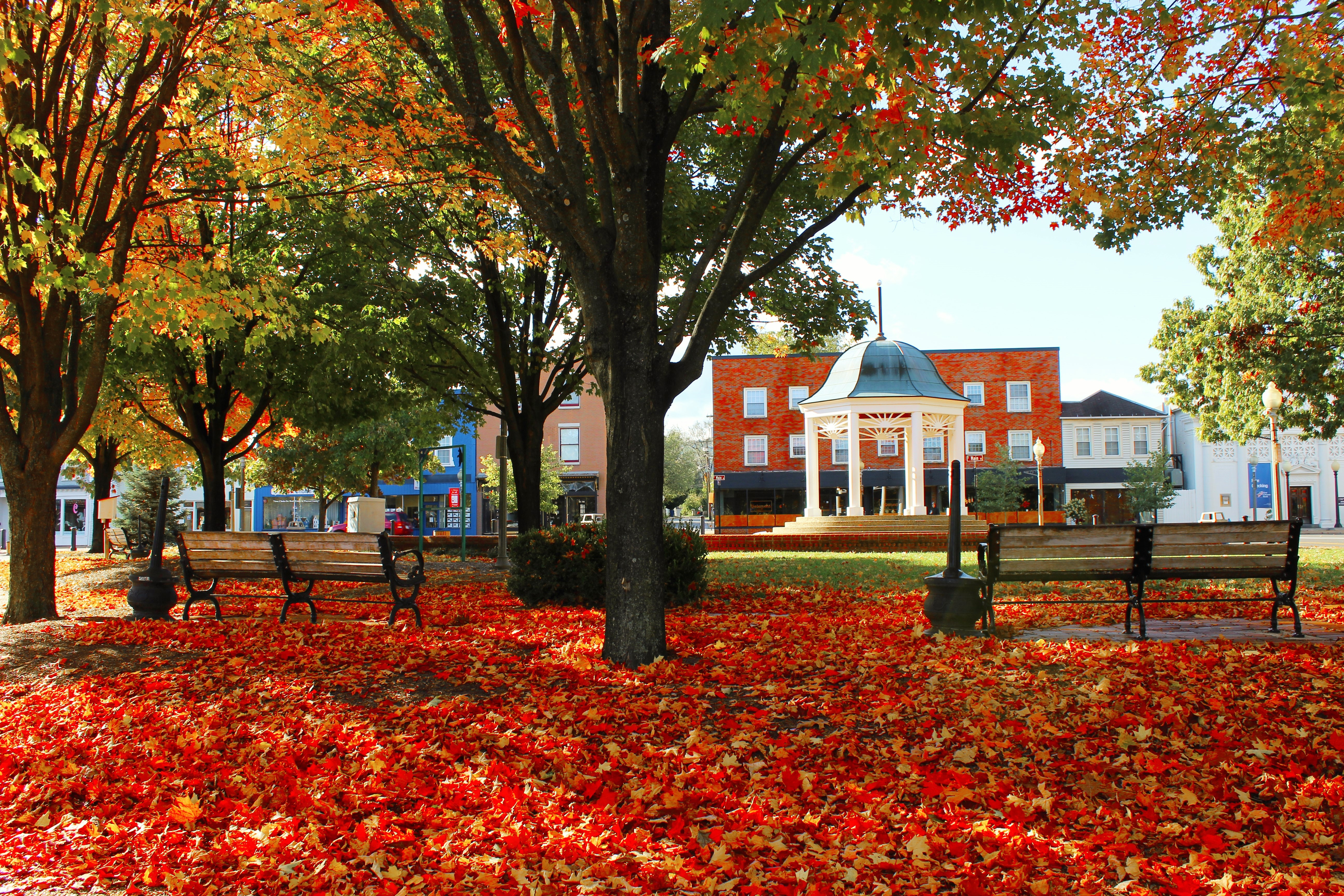 A town square seen during the height of fall. Red and orange leaves are spread across the ground. There is a gazebo in the background.