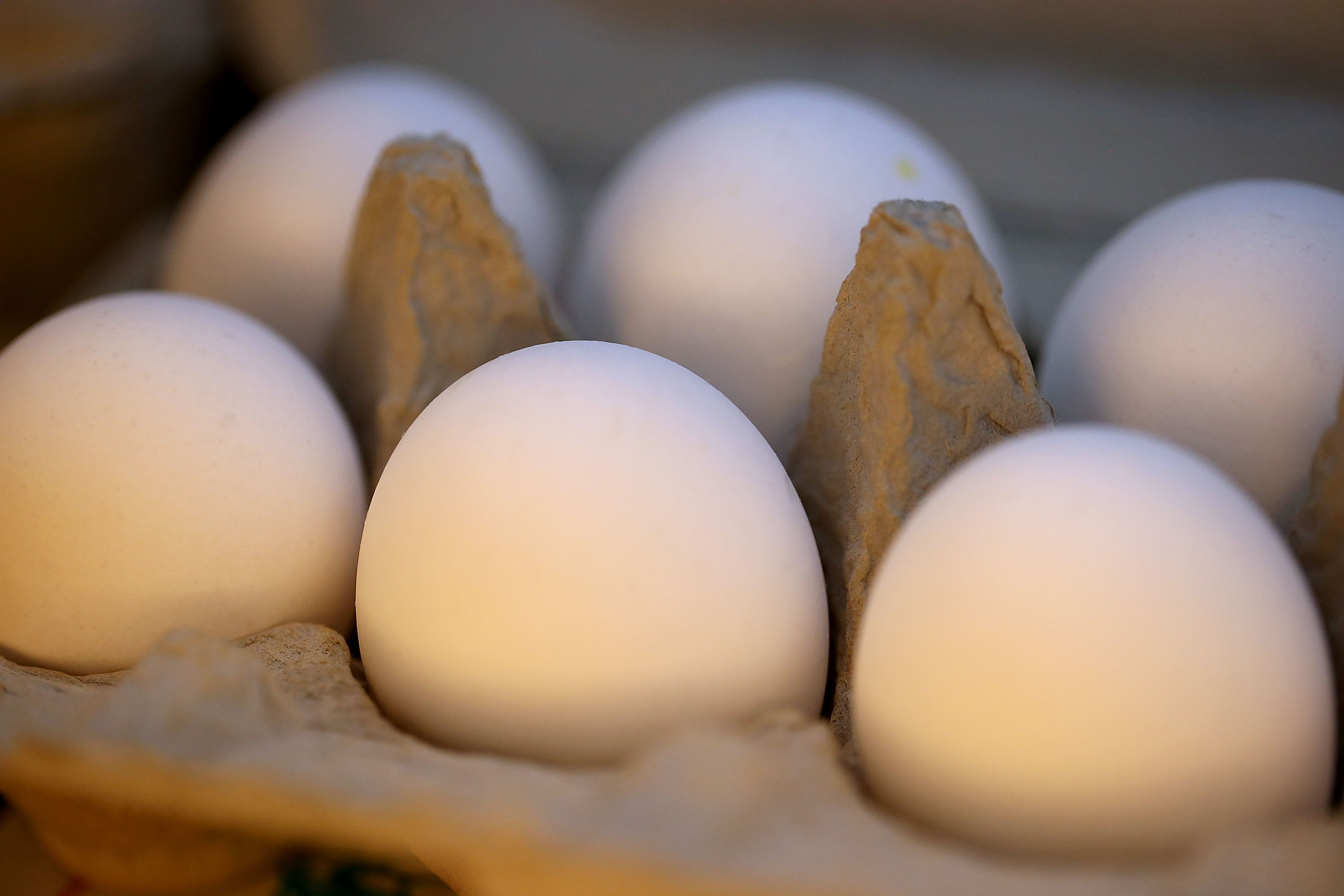 Egg Prices Continue Sharp Rise As Avian Flu Takes Tool On Supply