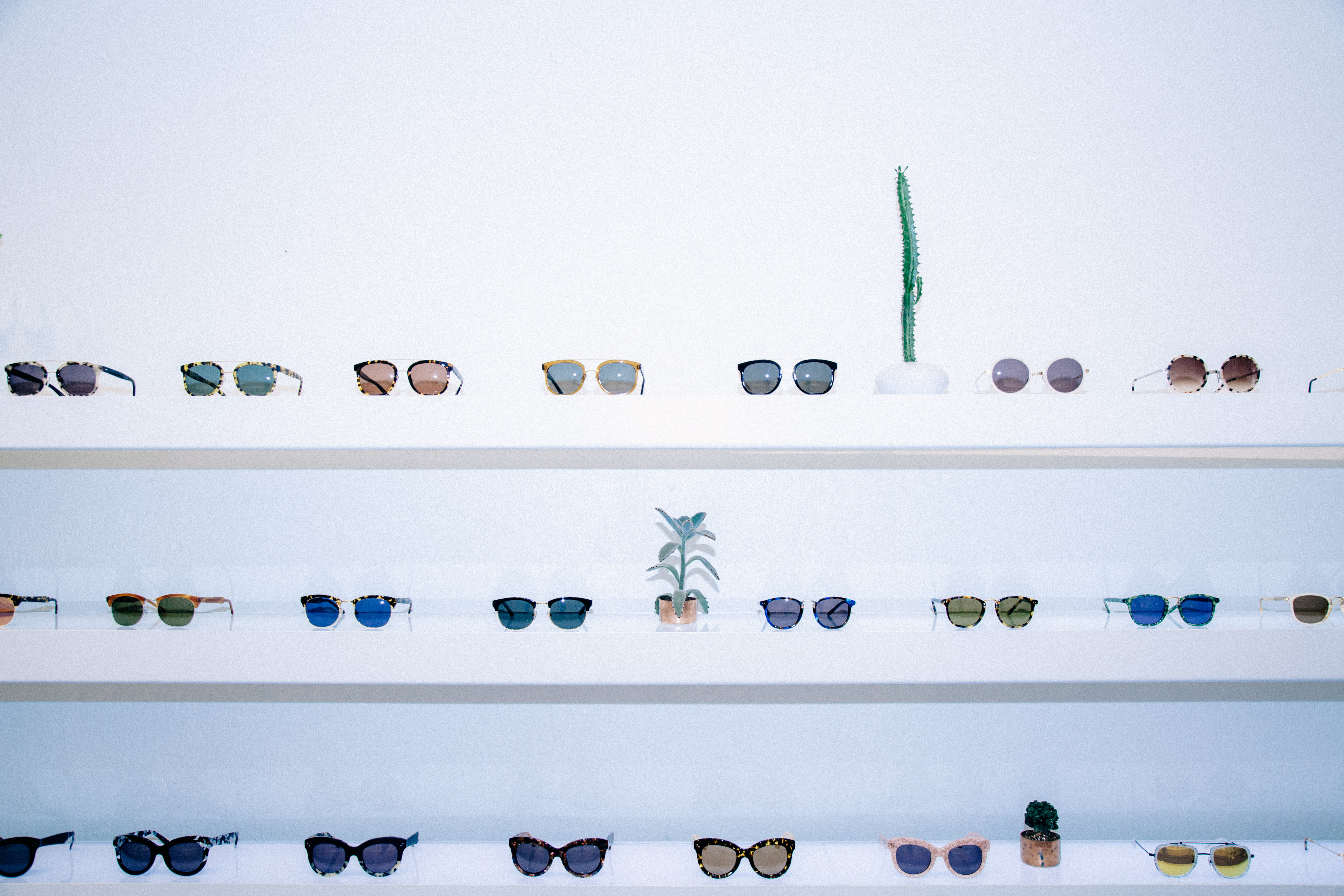 A wall display of colorful sunglasses by Krewe du Optic.