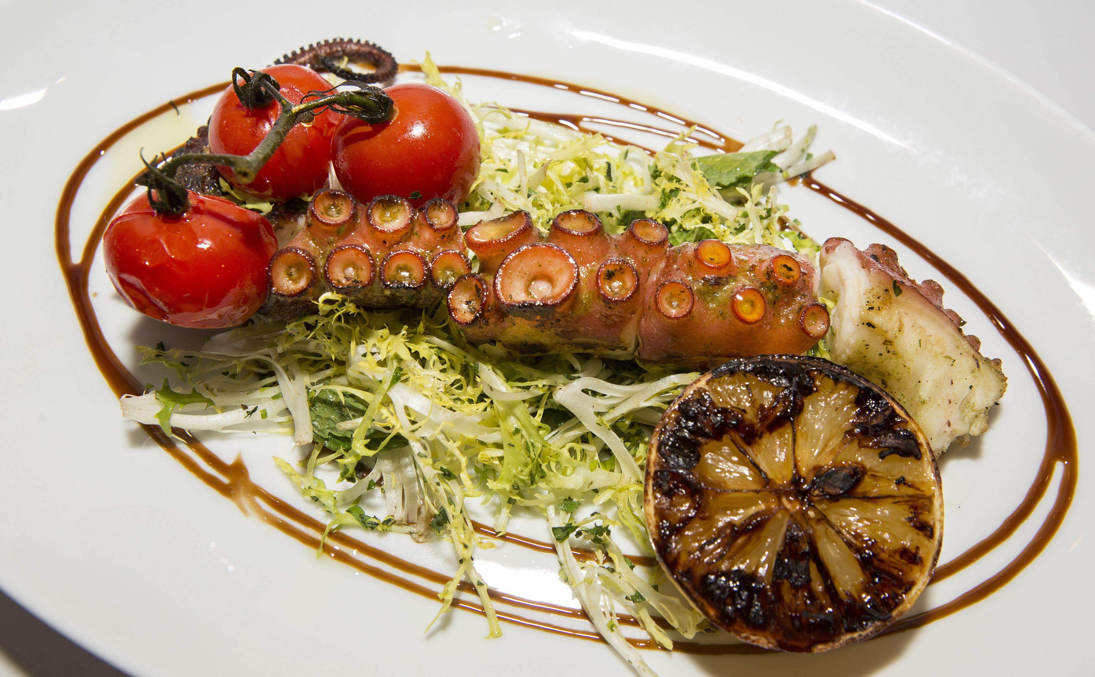 A large grilled octopus tentacle on a white plate with tomatoes and frisee.