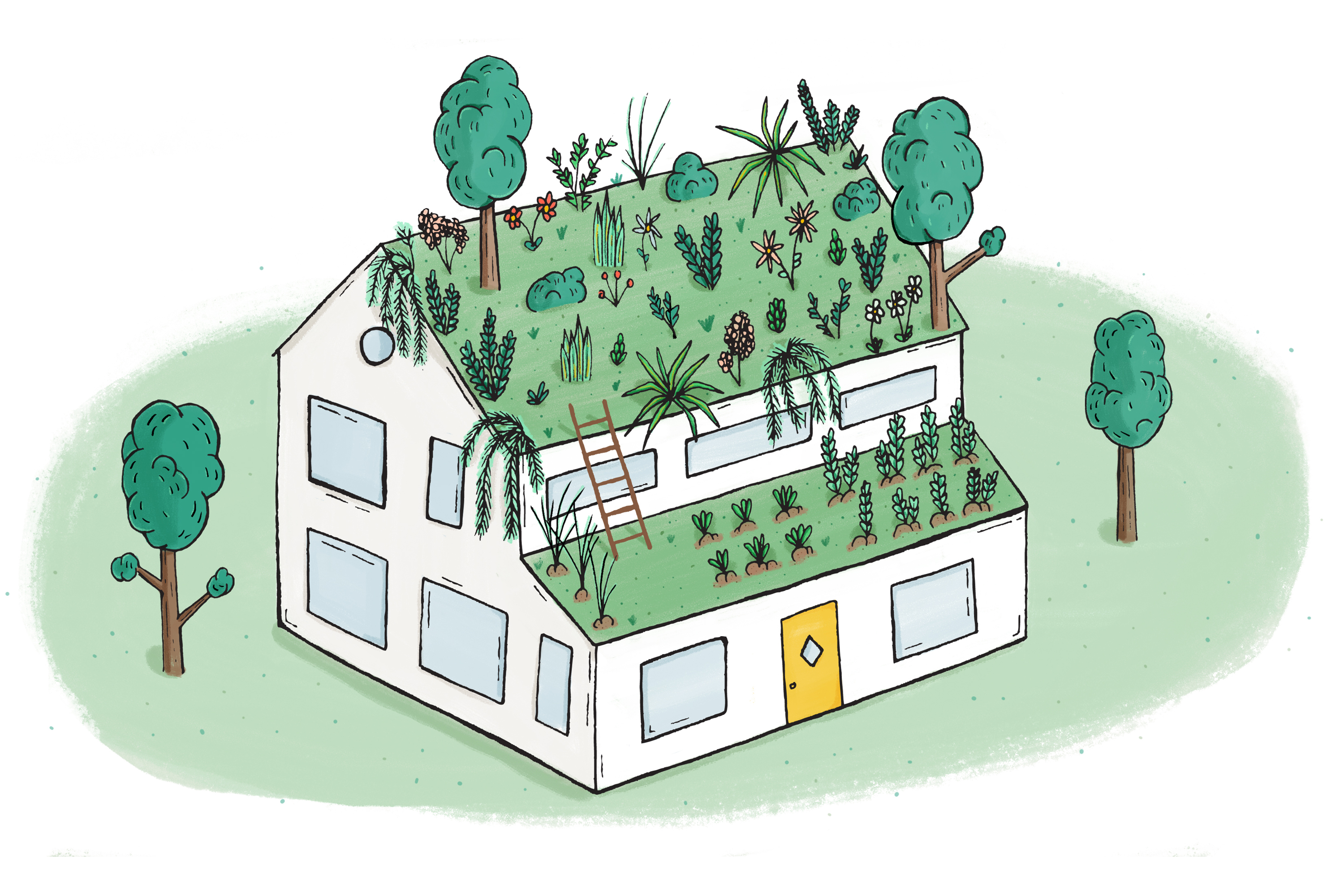 An illustration of a white house with trees, grass, and flowers growing out of its roof.