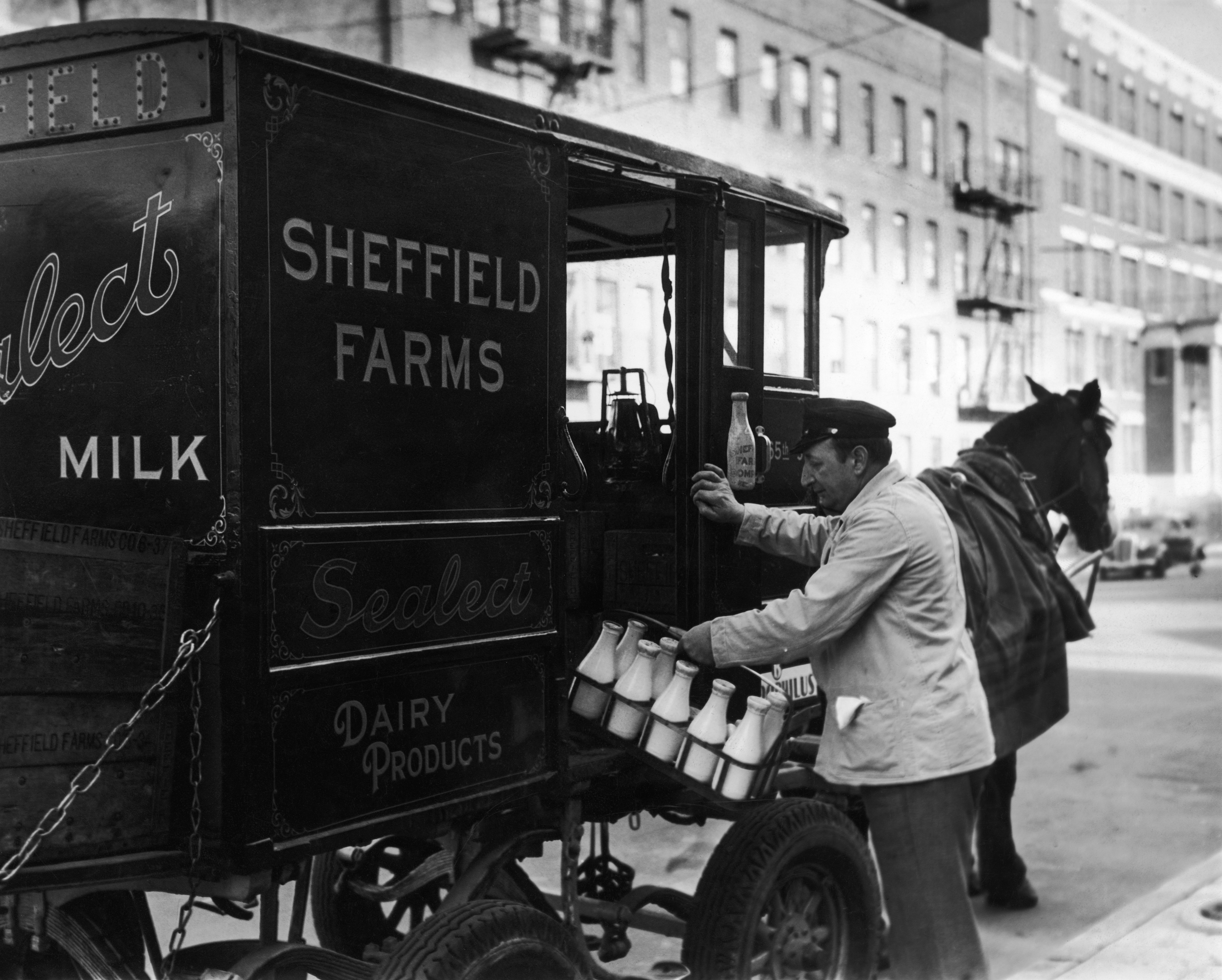A horse-drawn making a milk delivery.