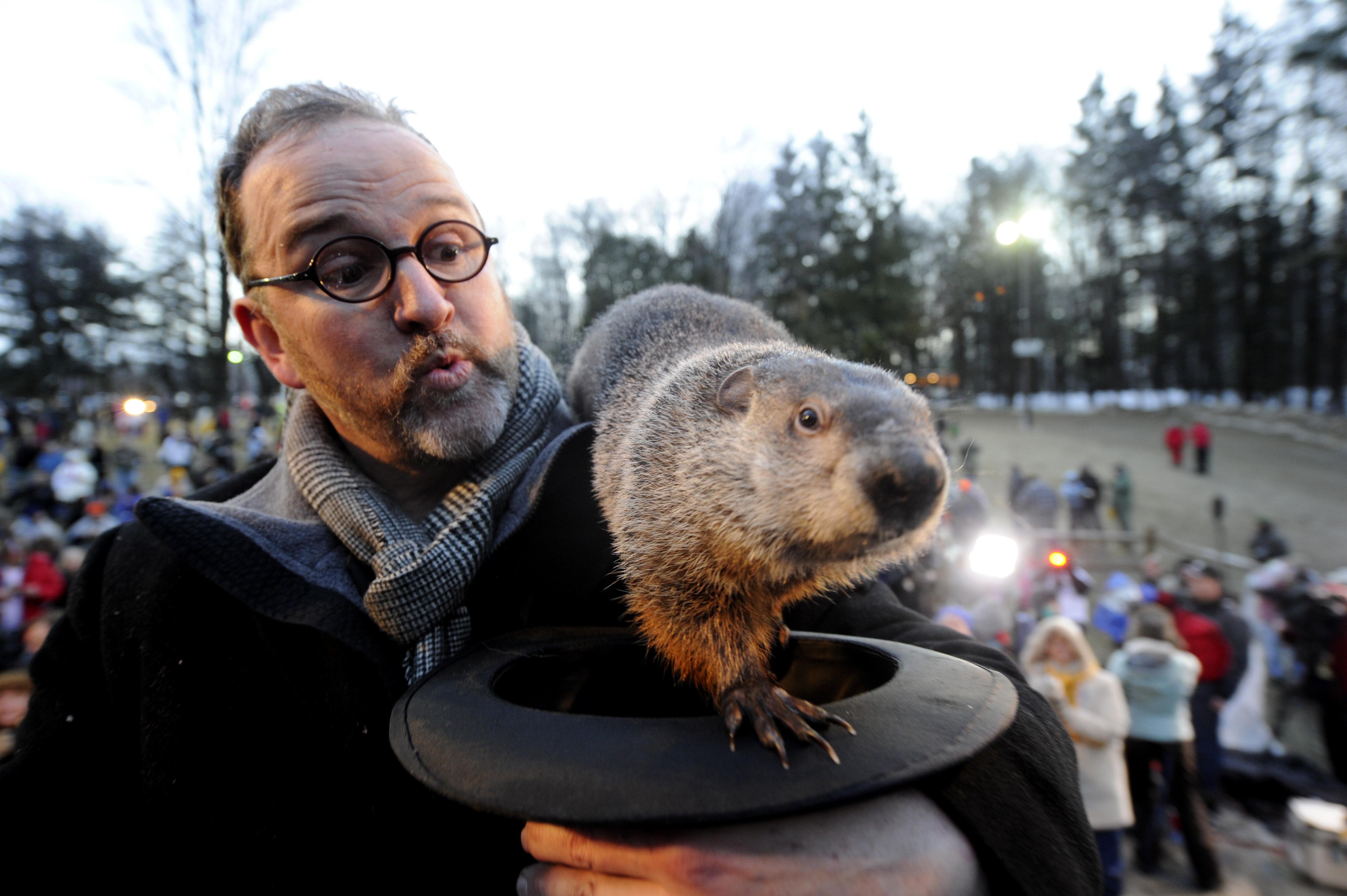 Crowds Gathering On Groundhog's Day For Punxsutawney Phil Tradition