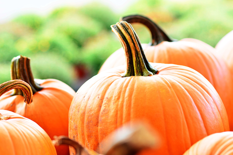 Round orange pumpkins on a table.
