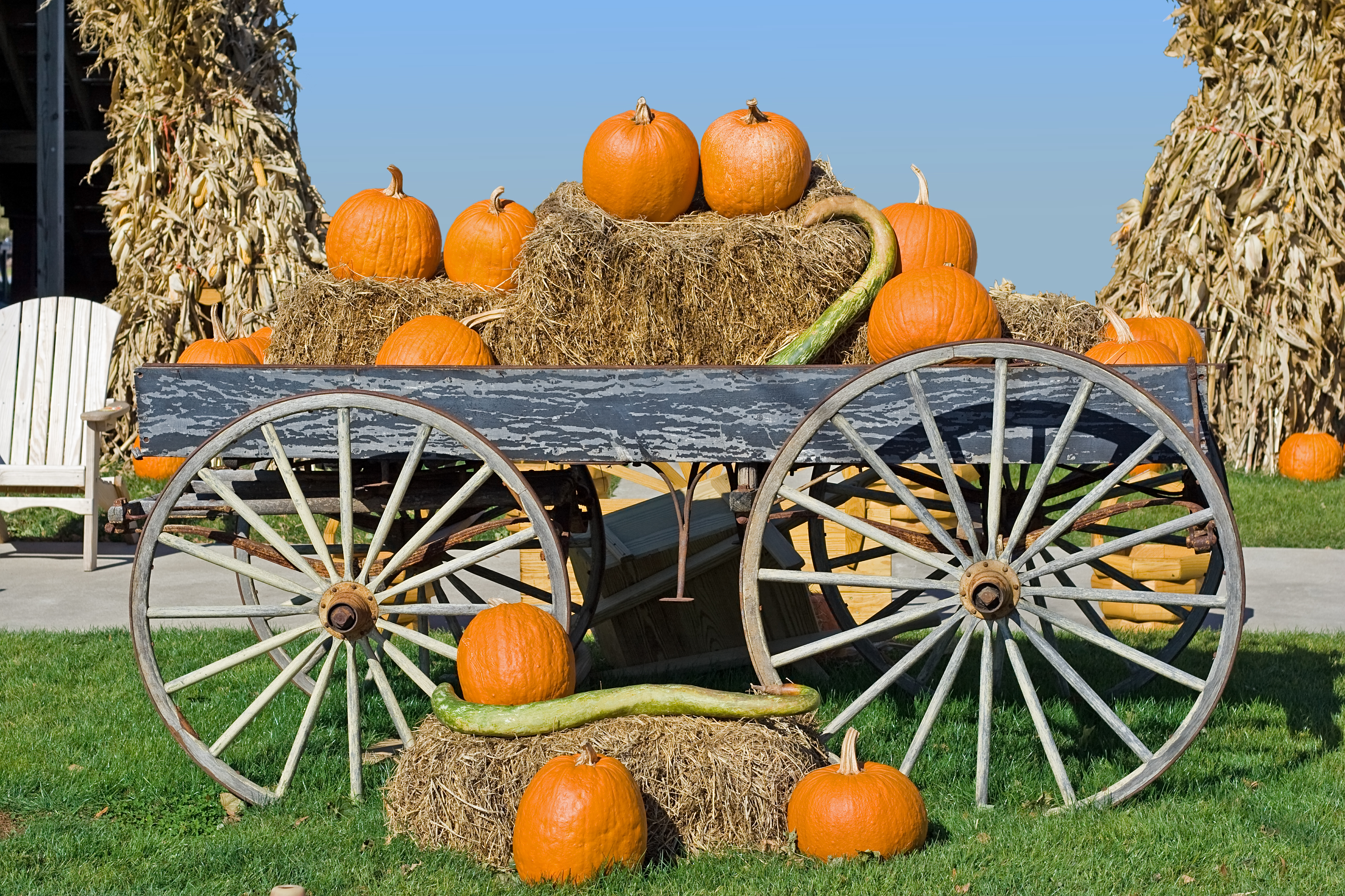 A pile of pumpkins on hay bales sit on a wagon with large wheels in a field.