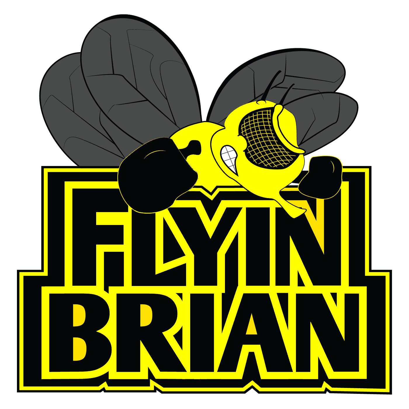 UFC Fight Breakdowns - Flyin' Brian Show
