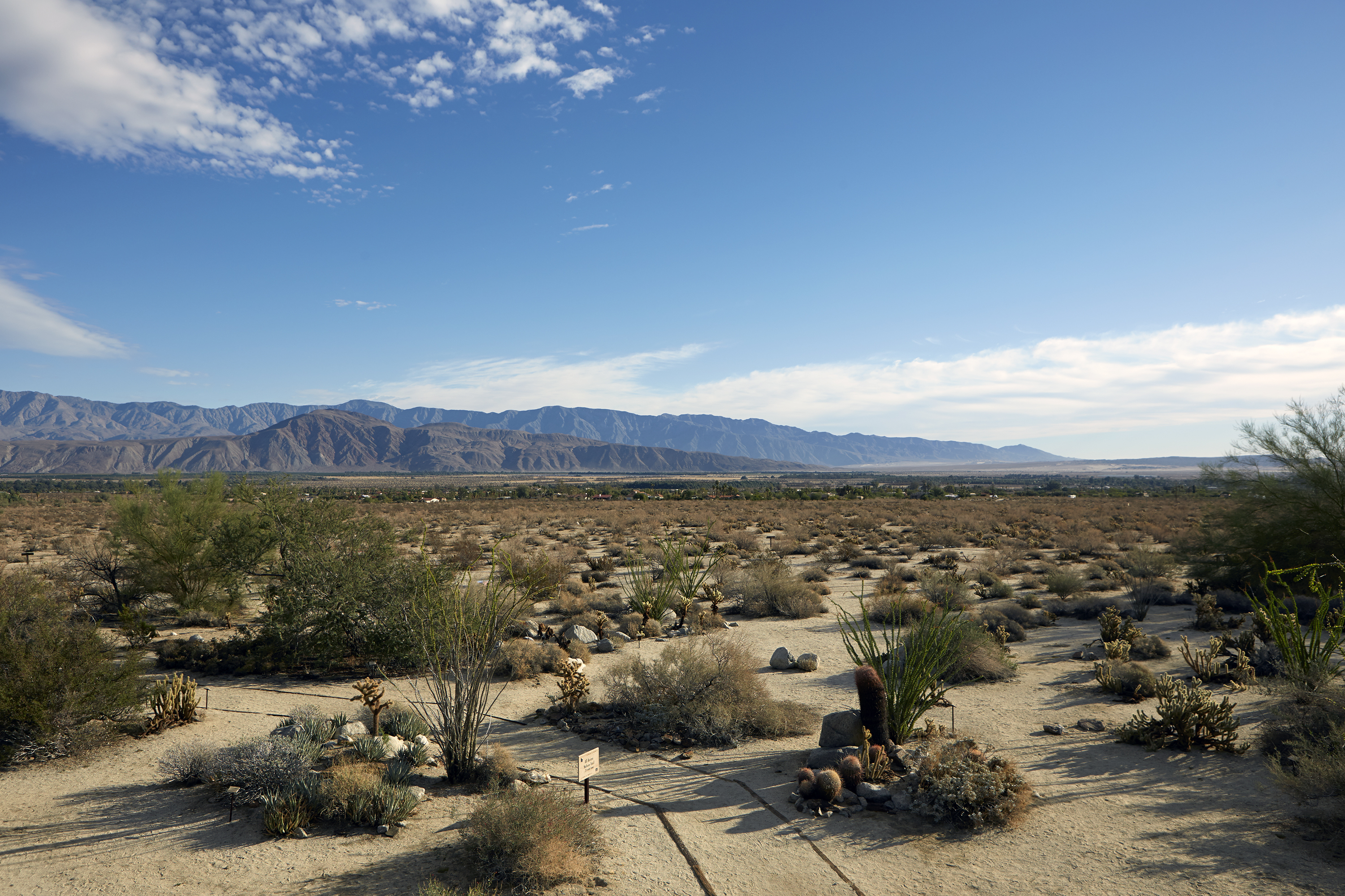 View of the desert landscape in Borrego Springs.