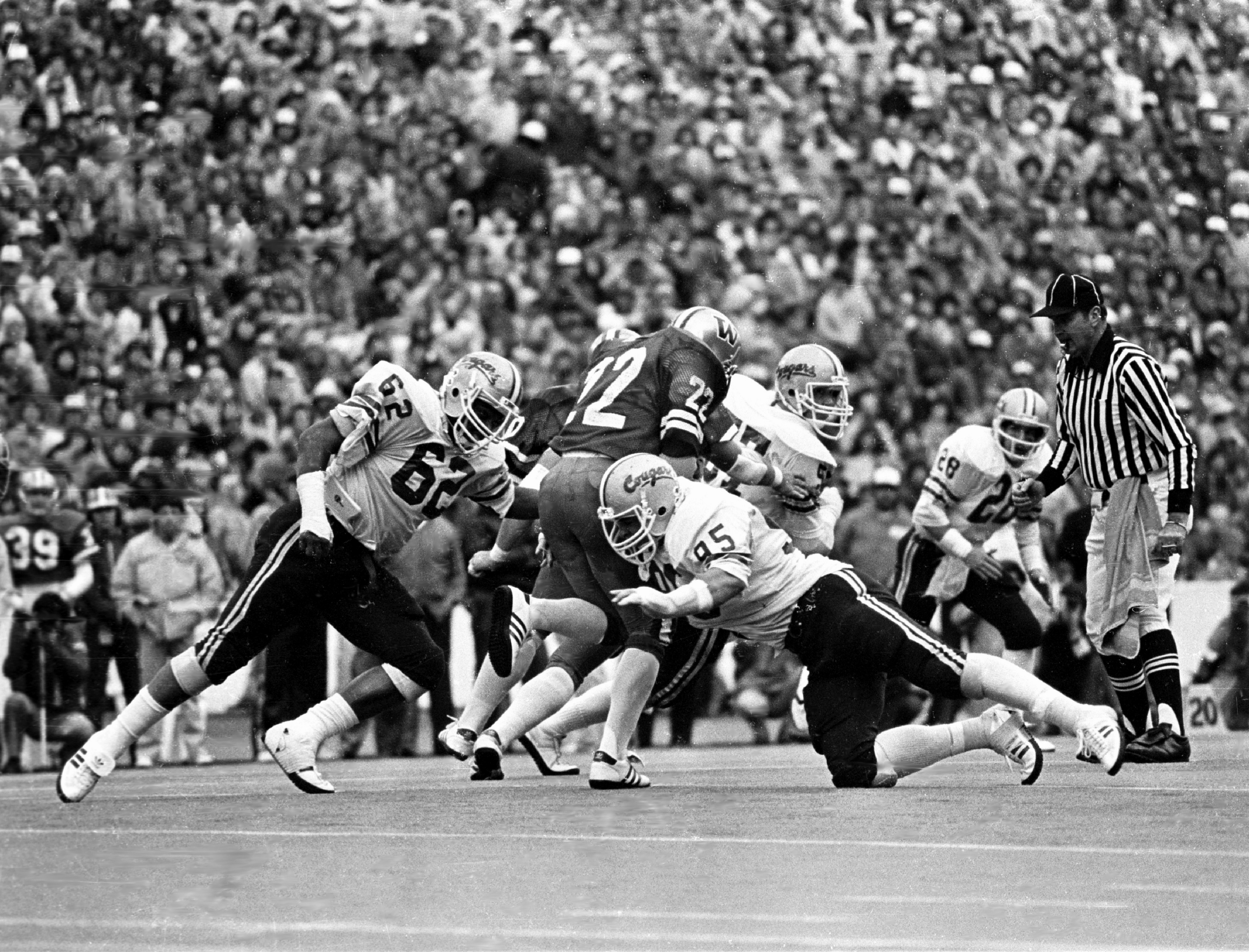 1981 Apple Cup