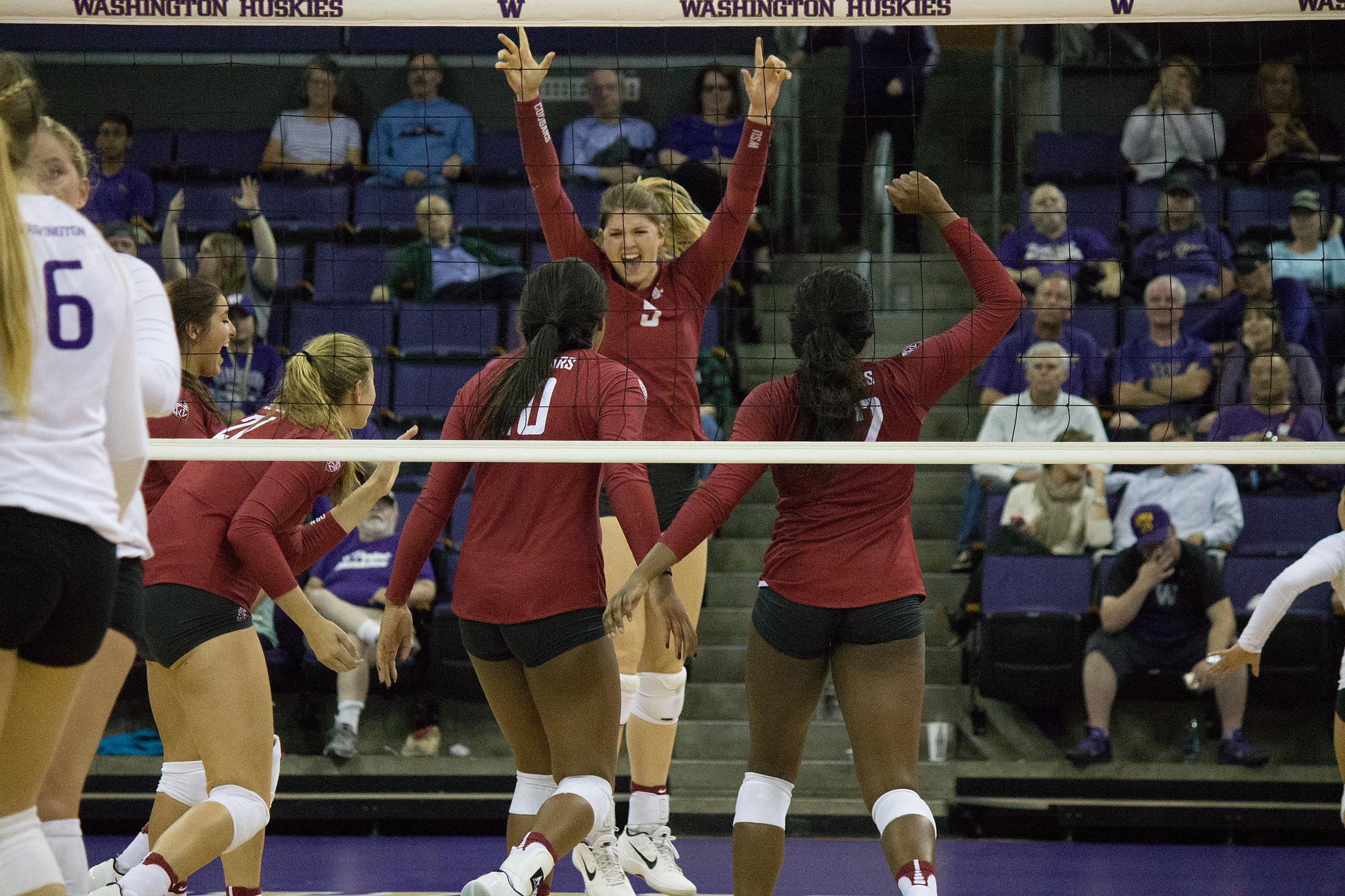 woodford cougar women The latest video uploads for washington state cougars volleyball.