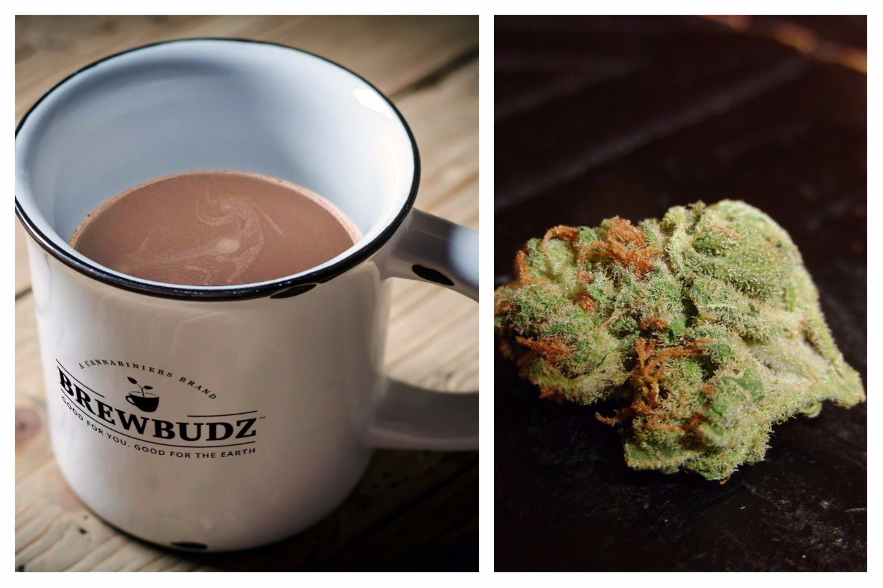 Weed Coffee Pods Give New Meaning to Wake and Bake