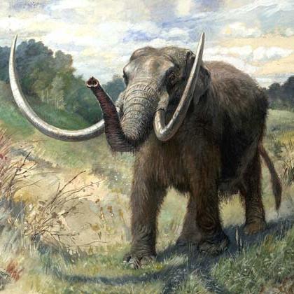 Painting of a mastodon
