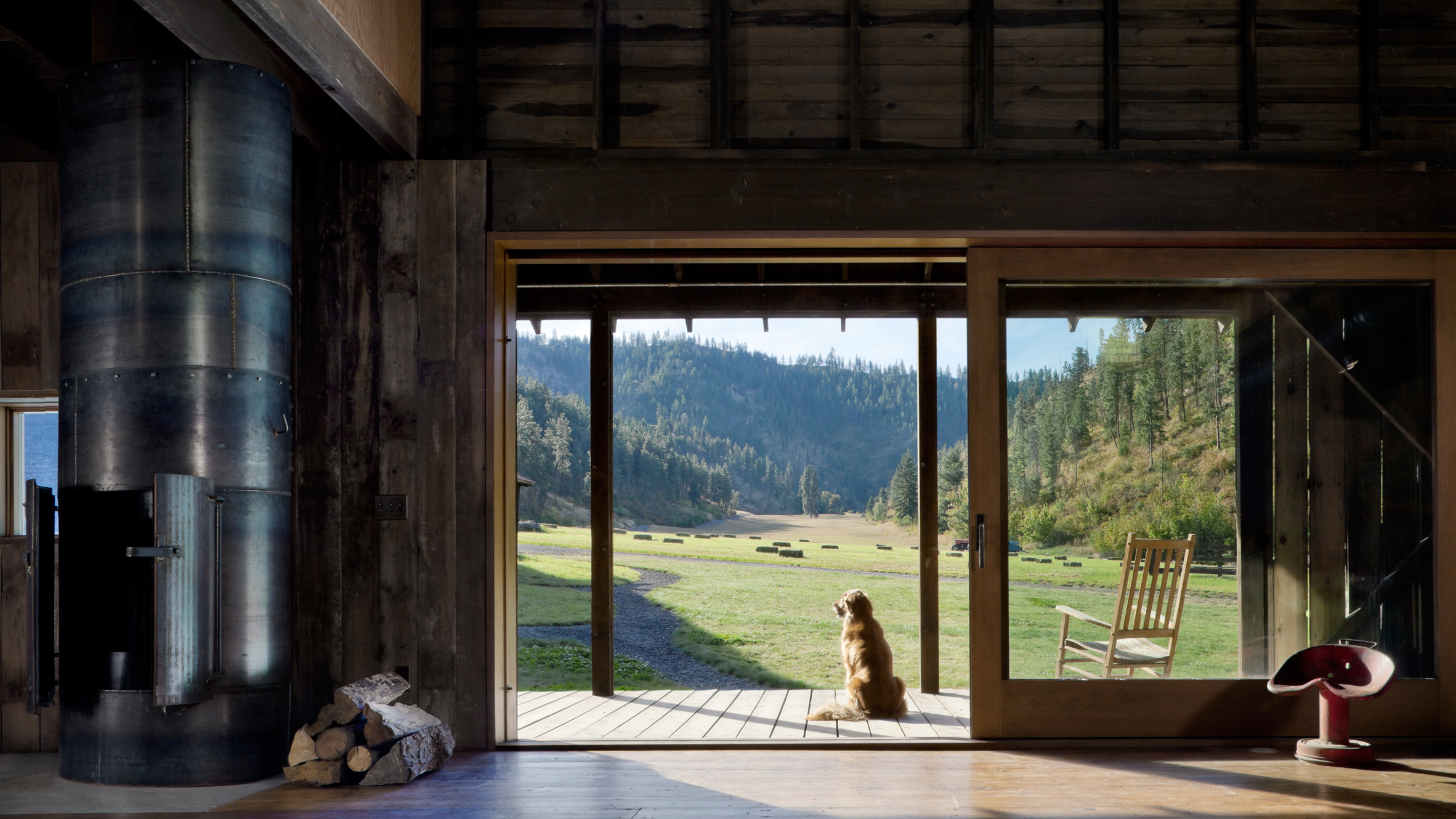 A dog sits in the doorway of a converted barn, facing away from the viewer and looking out a green, forested landscape.