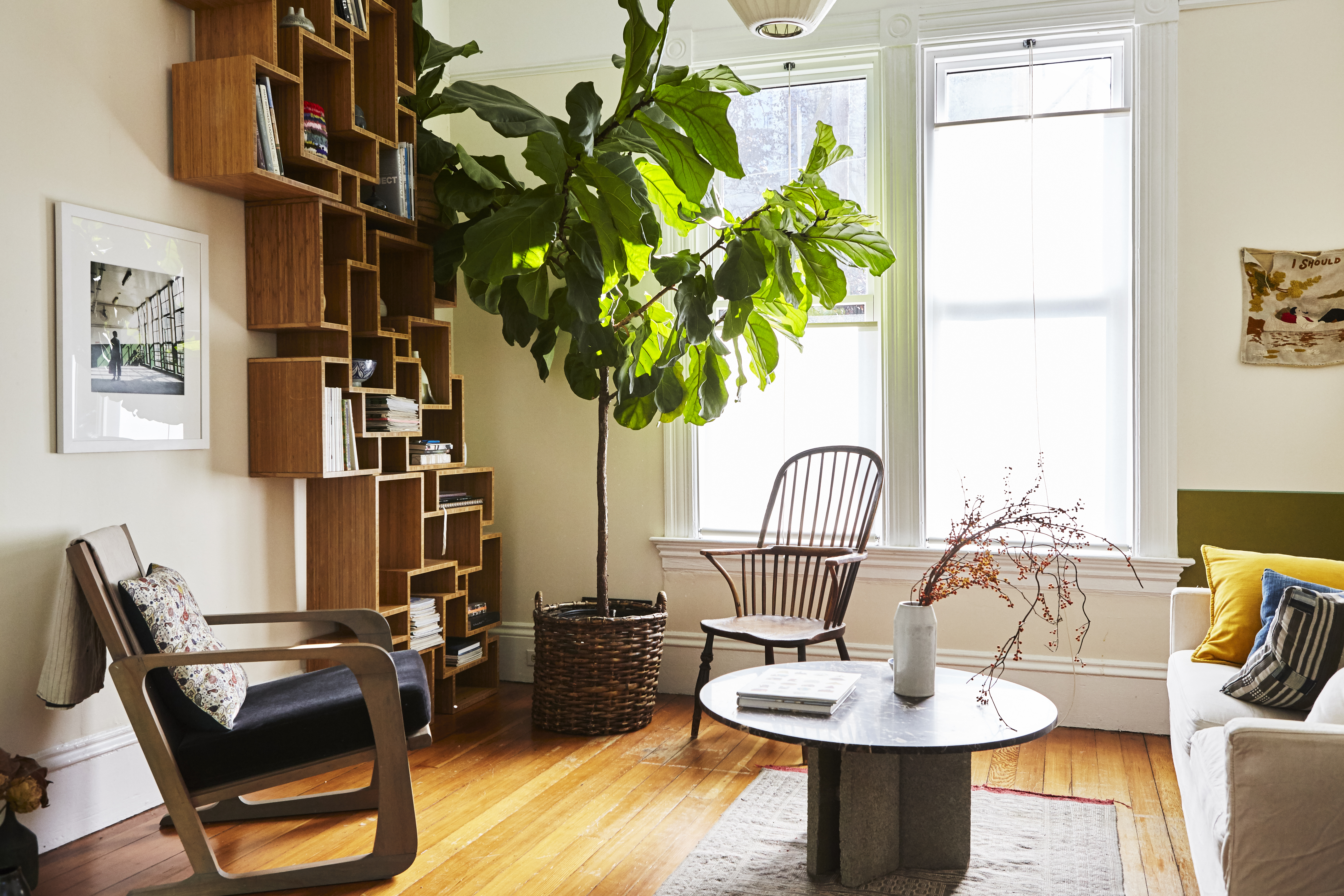 Living room with an abstract shelf, a large plant, and a round coffee table.