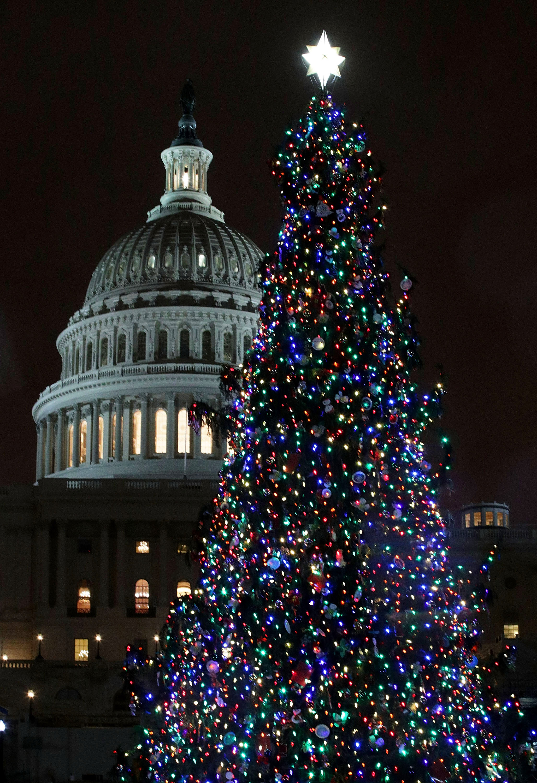 Brookland Washington DC Curbed DC - Visiting The National Christmas Tree