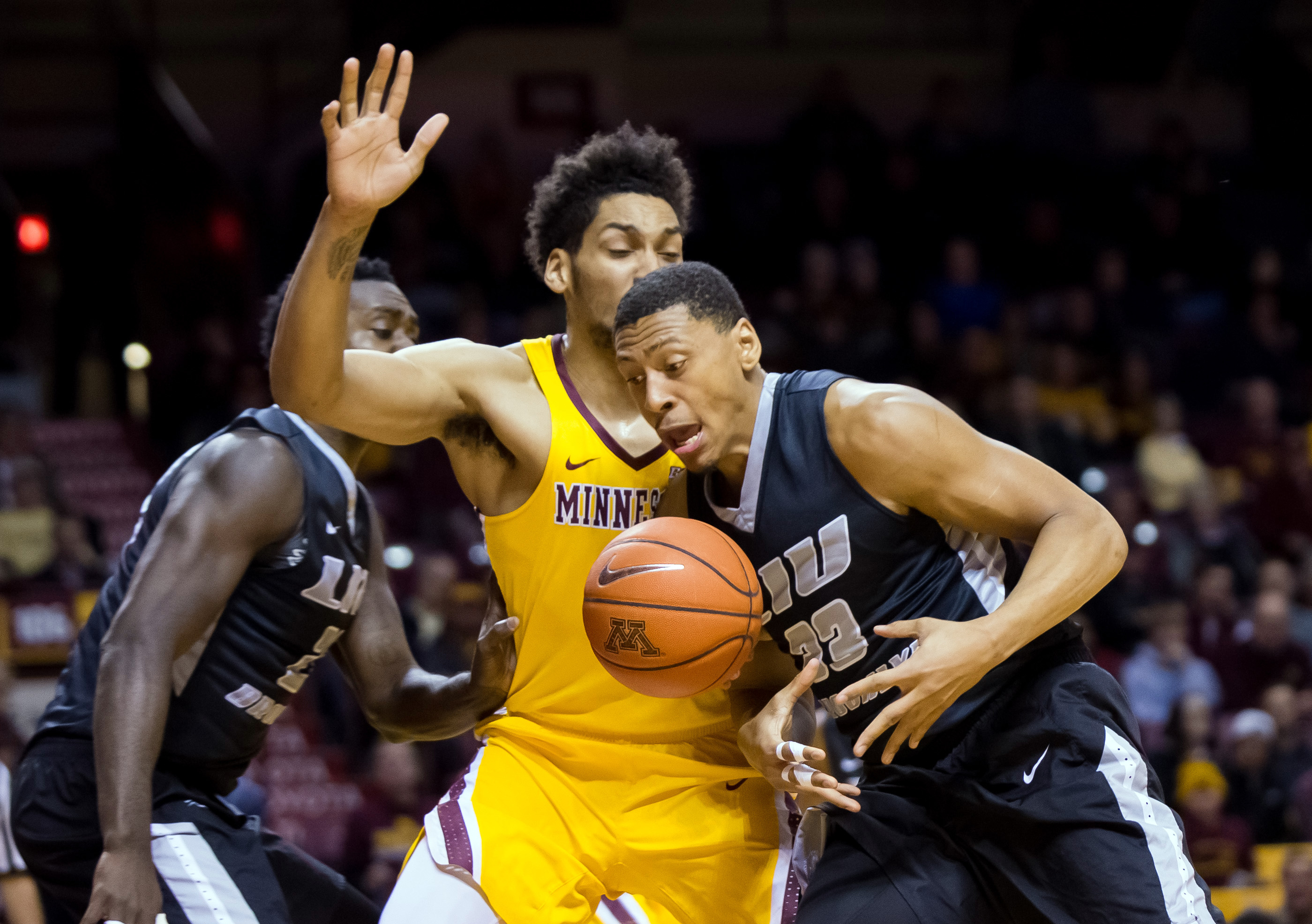 NCAA Basketball: LIU Brooklyn at Minnesota