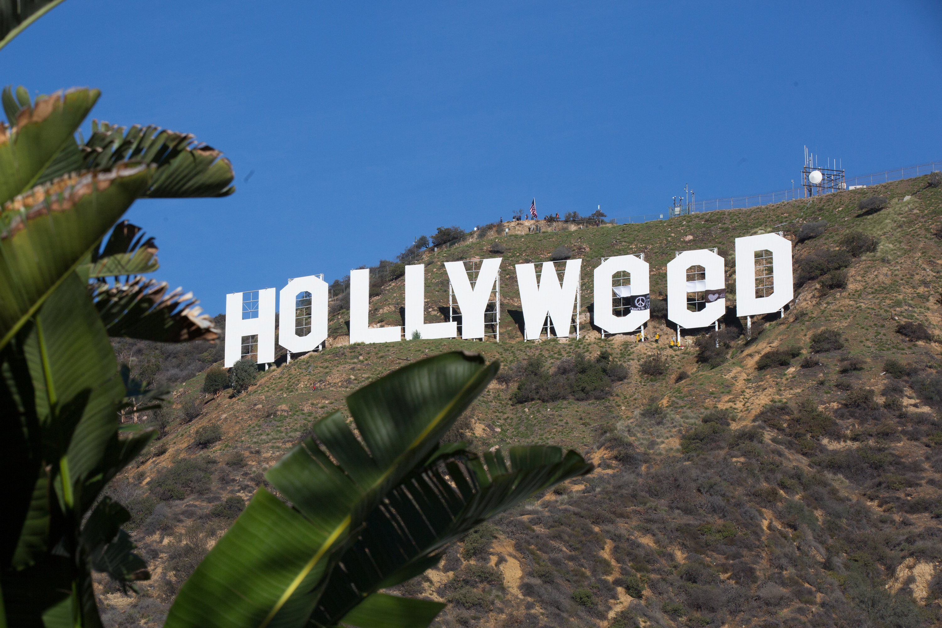 The Iconic Hollywood Sign Gets Changed To Read 'Hollyweed'