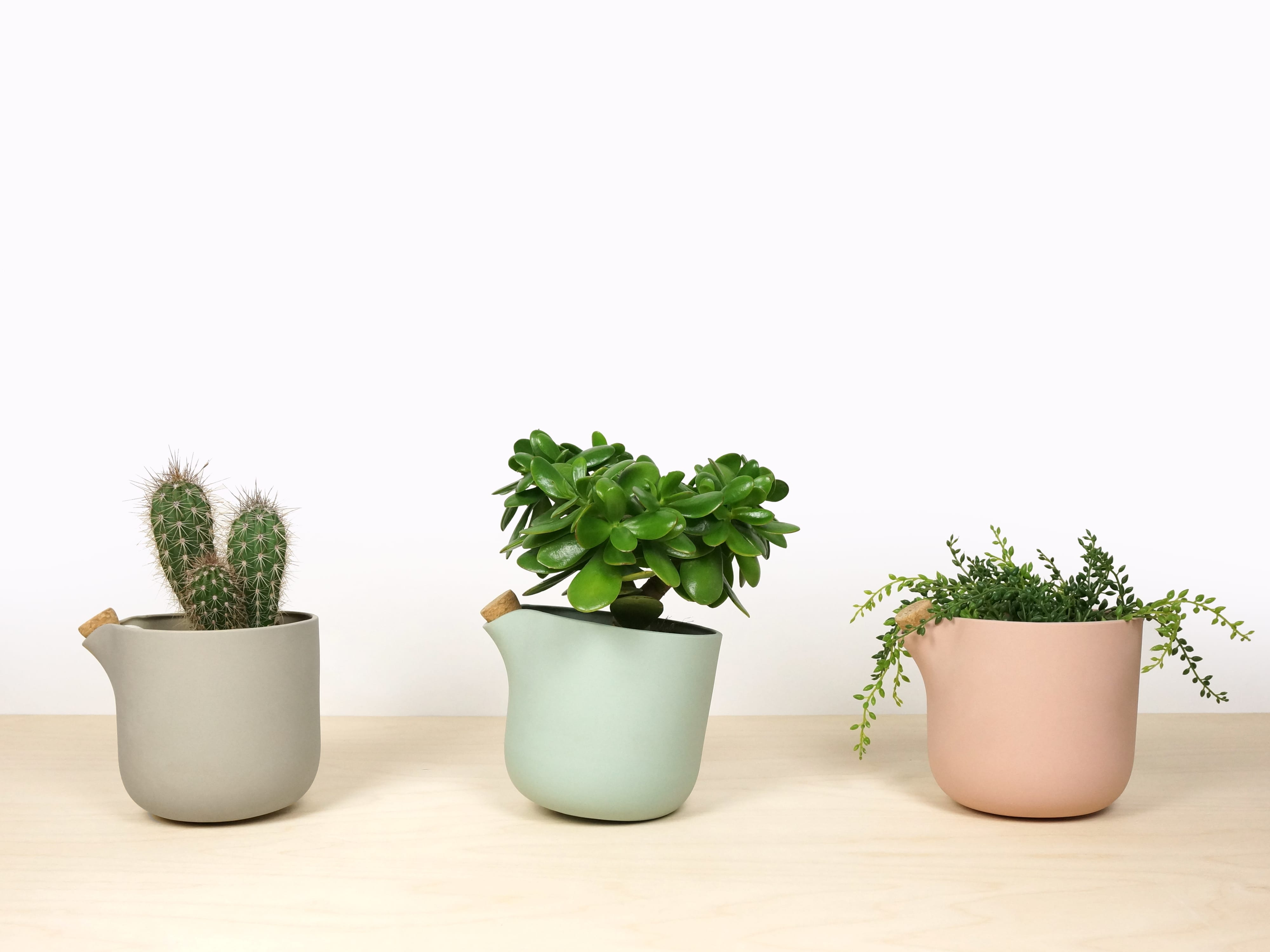 7 self-watering planters to kickstart your spring