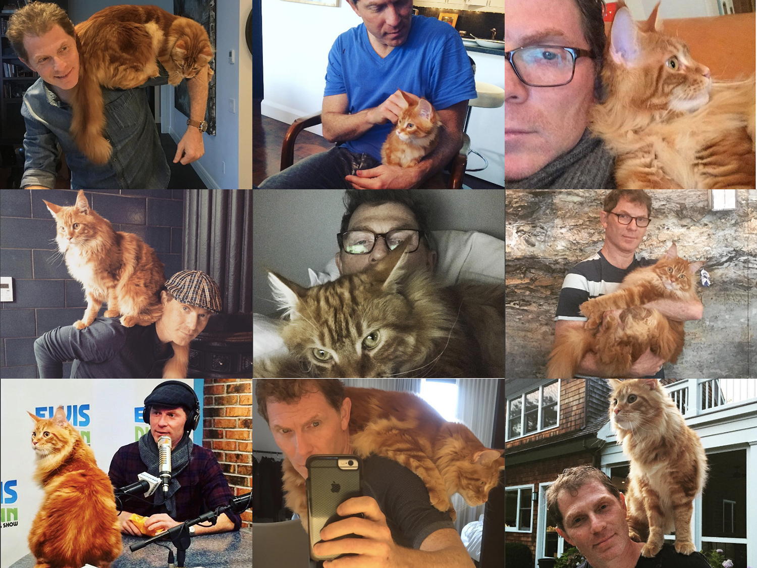 Nobody Loves Cats More Than Bobby Flay
