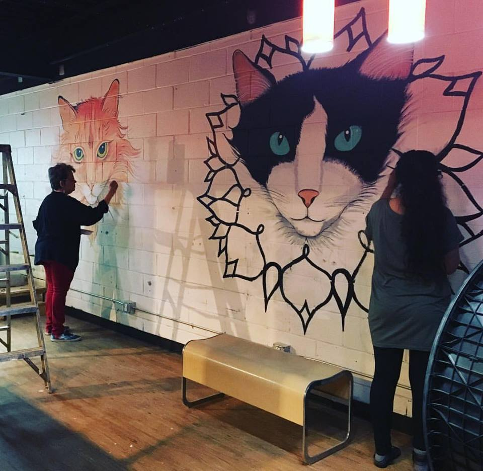 Java Cats Cafe Should Open 'Within the Next Two Weeks'