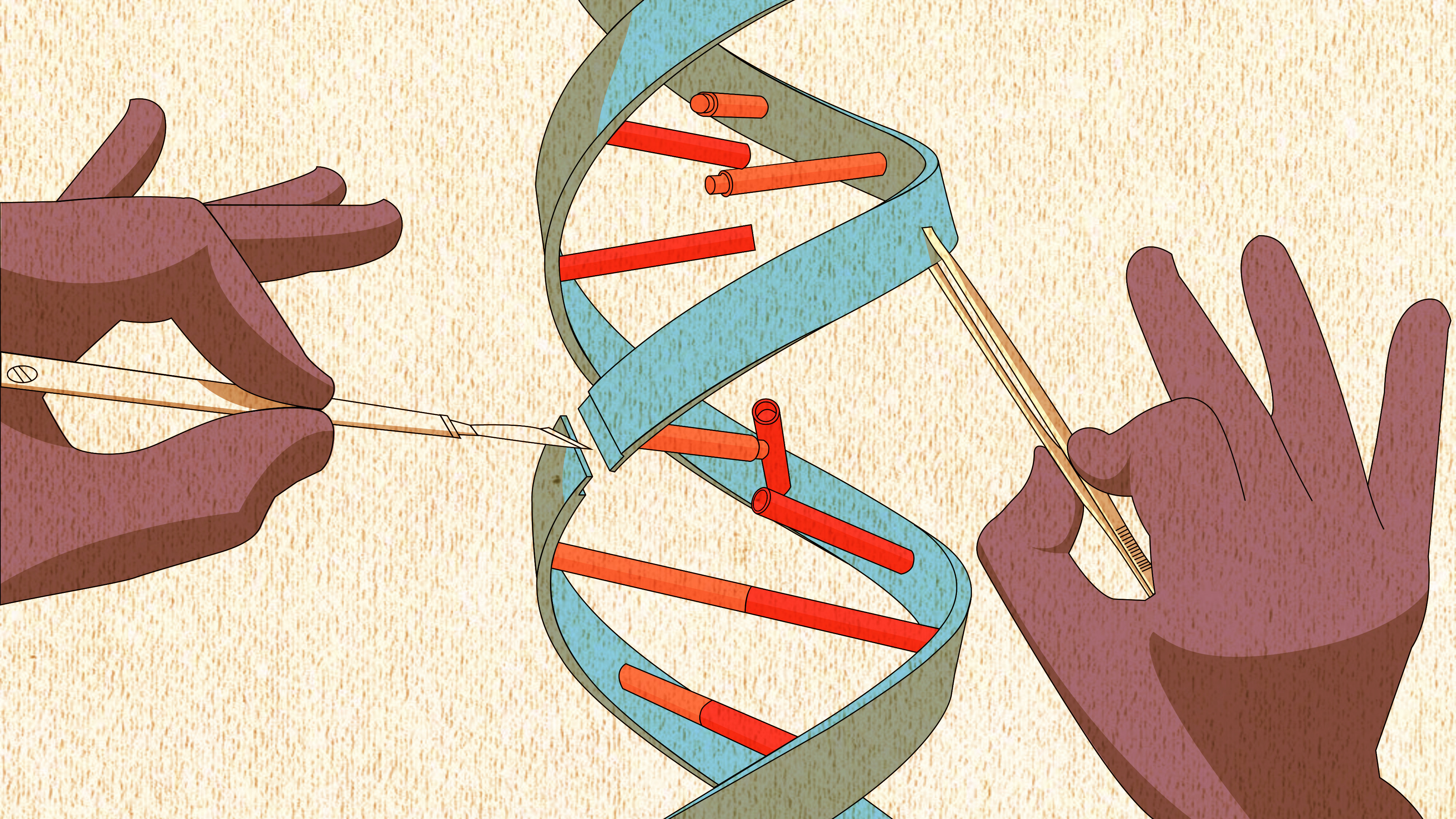 Scientists rewrote the DNA of an entire species