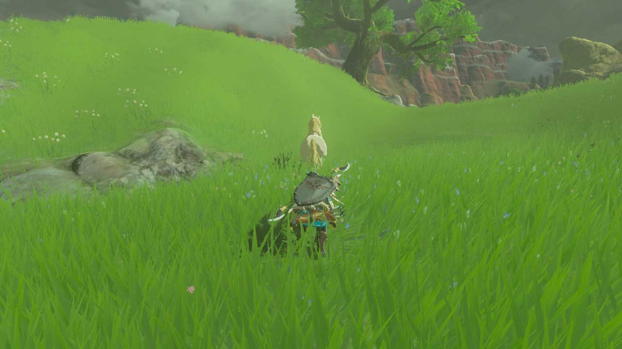 Zelda Breath of the Wild guide: Everything you need to know about horses (like how to kill and revive them)
