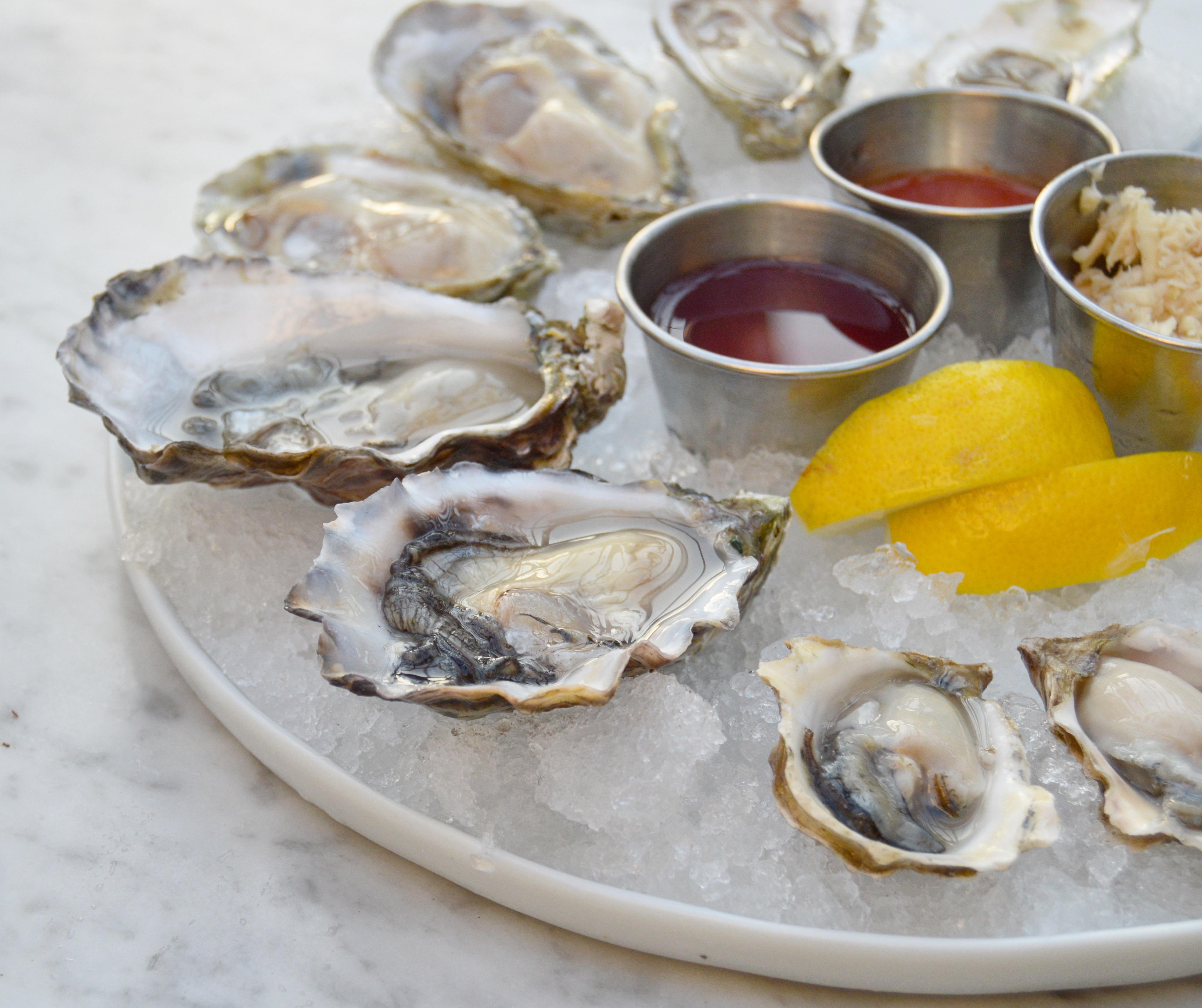 oysters sawyer