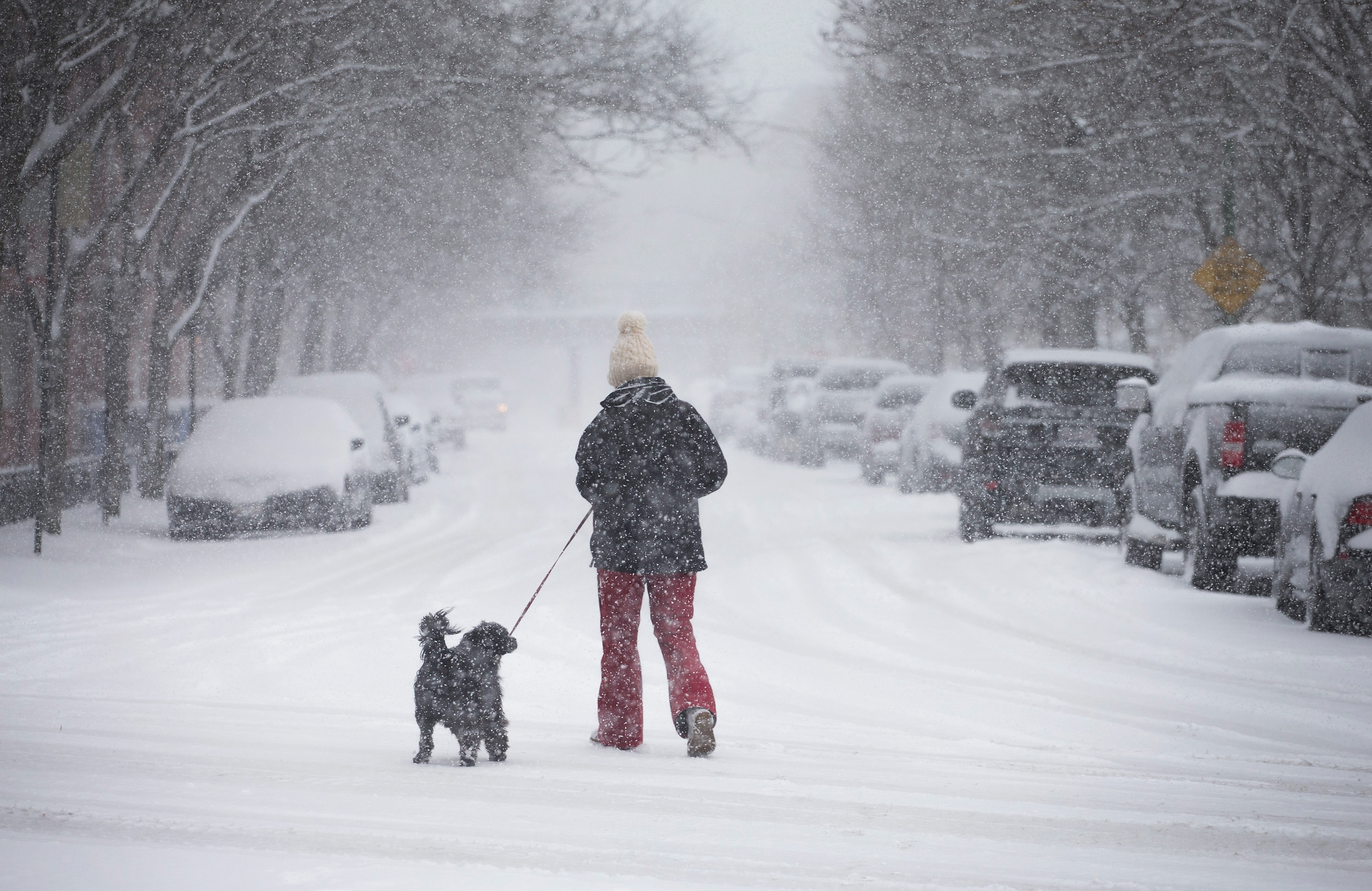 Spring Storm Brings Few Inches Of Snow To Chicago