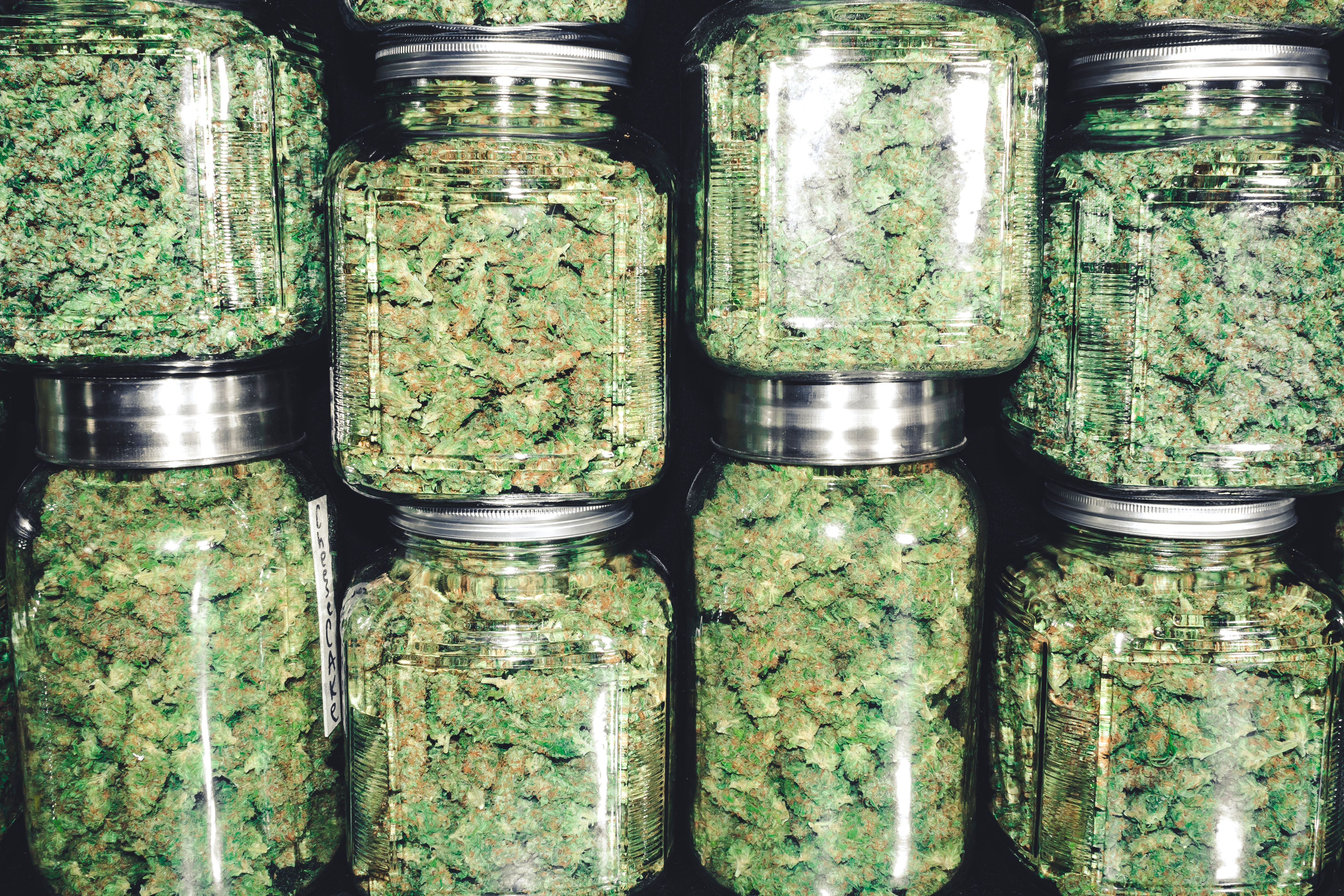 Large jars full of buds of marijuana stacked on top of each other.
